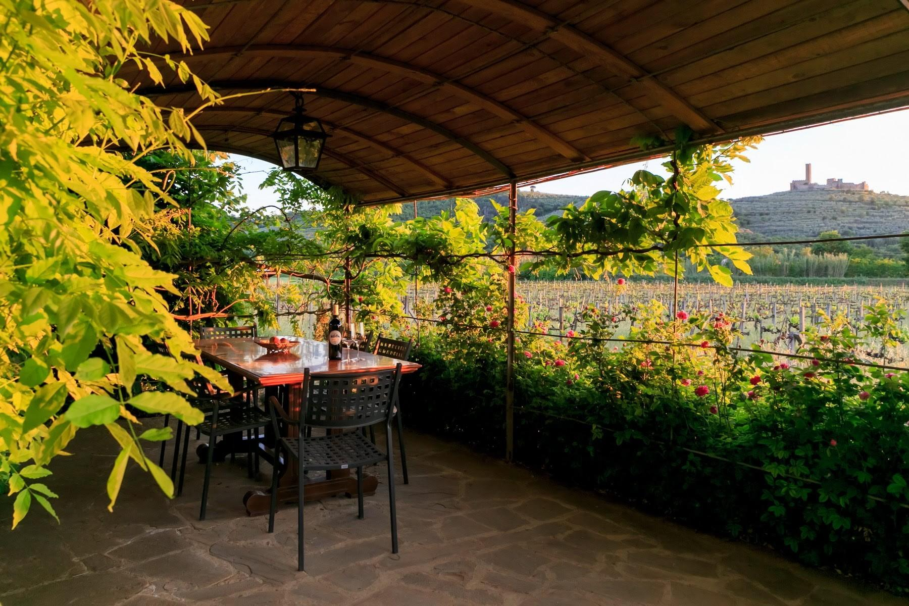 Agritourismo and Biodynamic farm in the heart of Tuscany with 15 ha of land. - 25