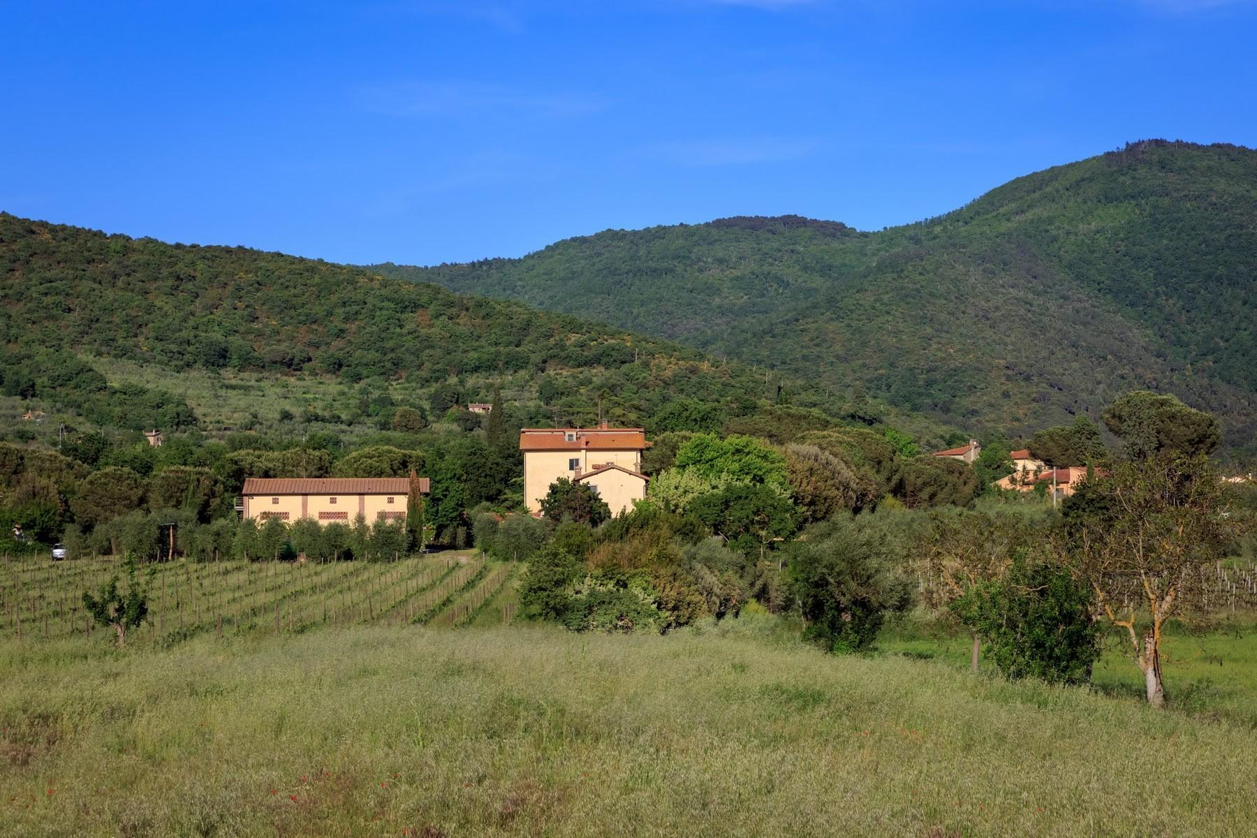 Agritourismo and Biodynamic farm in the heart of Tuscany with 15 ha of land. - 29