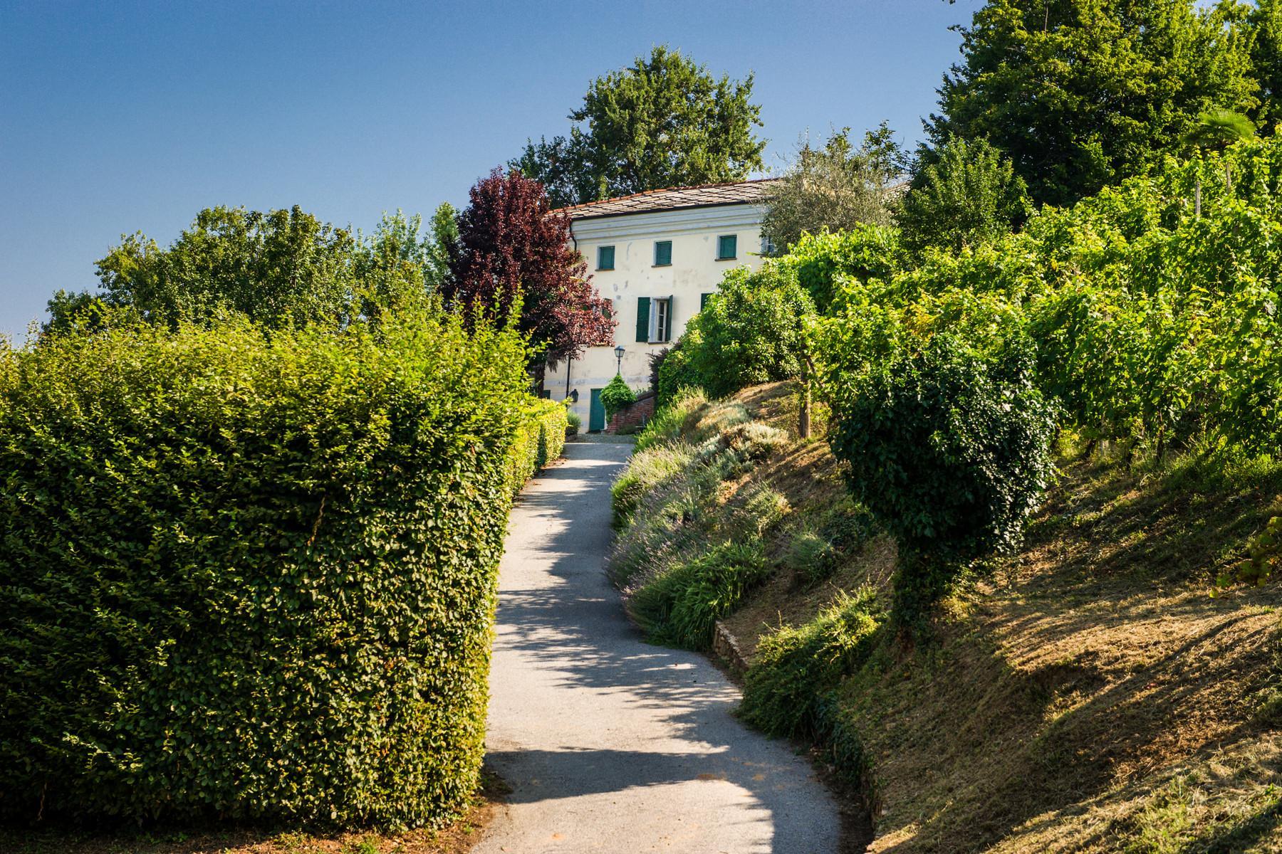 Splendid villa with winery in Piedmont - 3