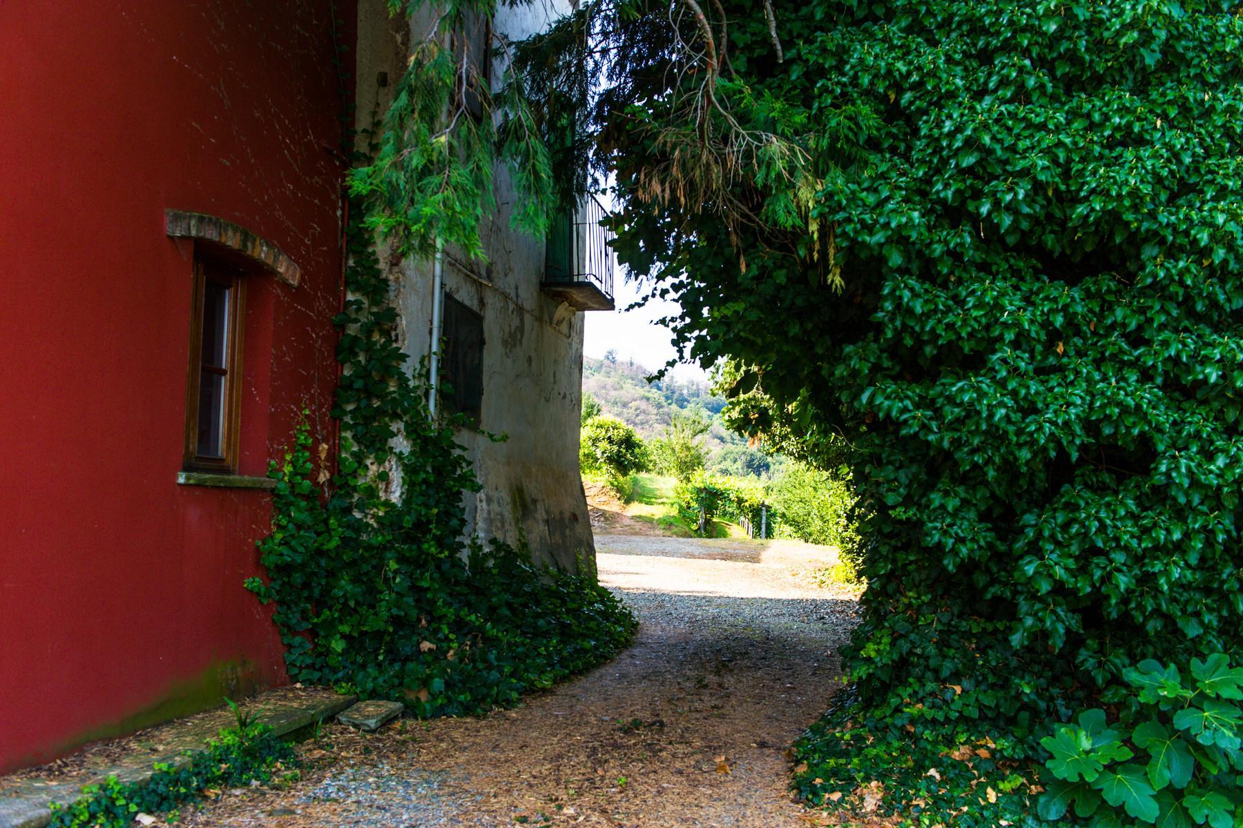 Splendid villa with winery in Piedmont - 15