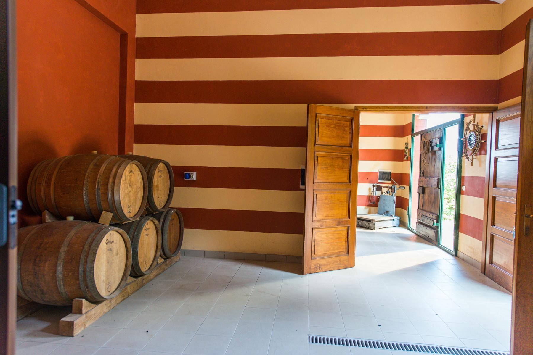 Splendid villa with winery in Piedmont - 16