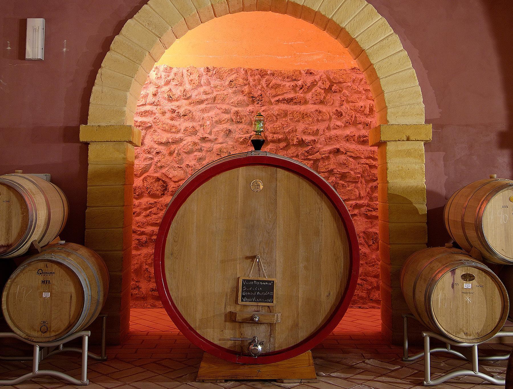 Magnifica azienda vinicola Siciliana - 17