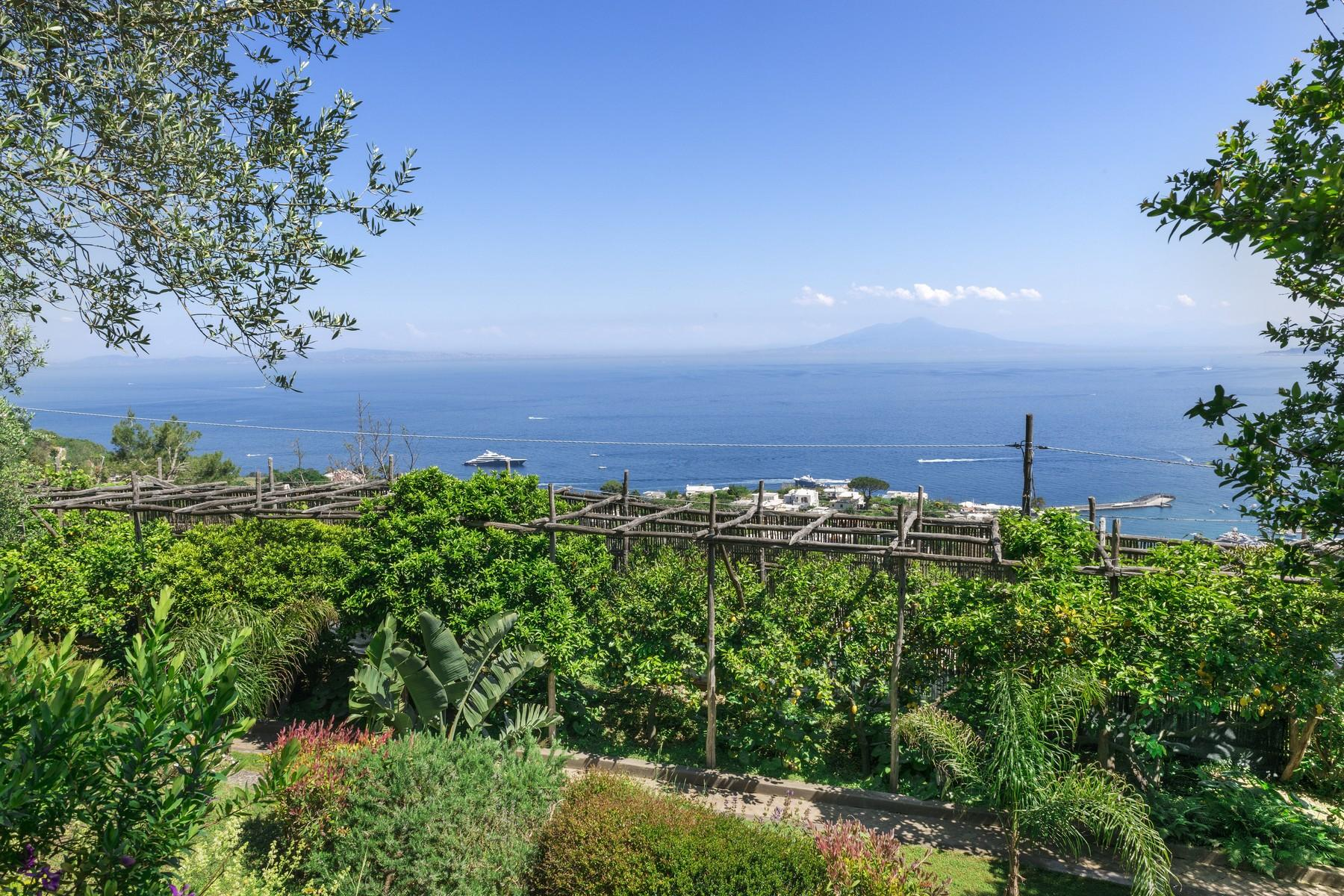 Amazing villa overlooking the sea and the most beautiful garden in the island - 7