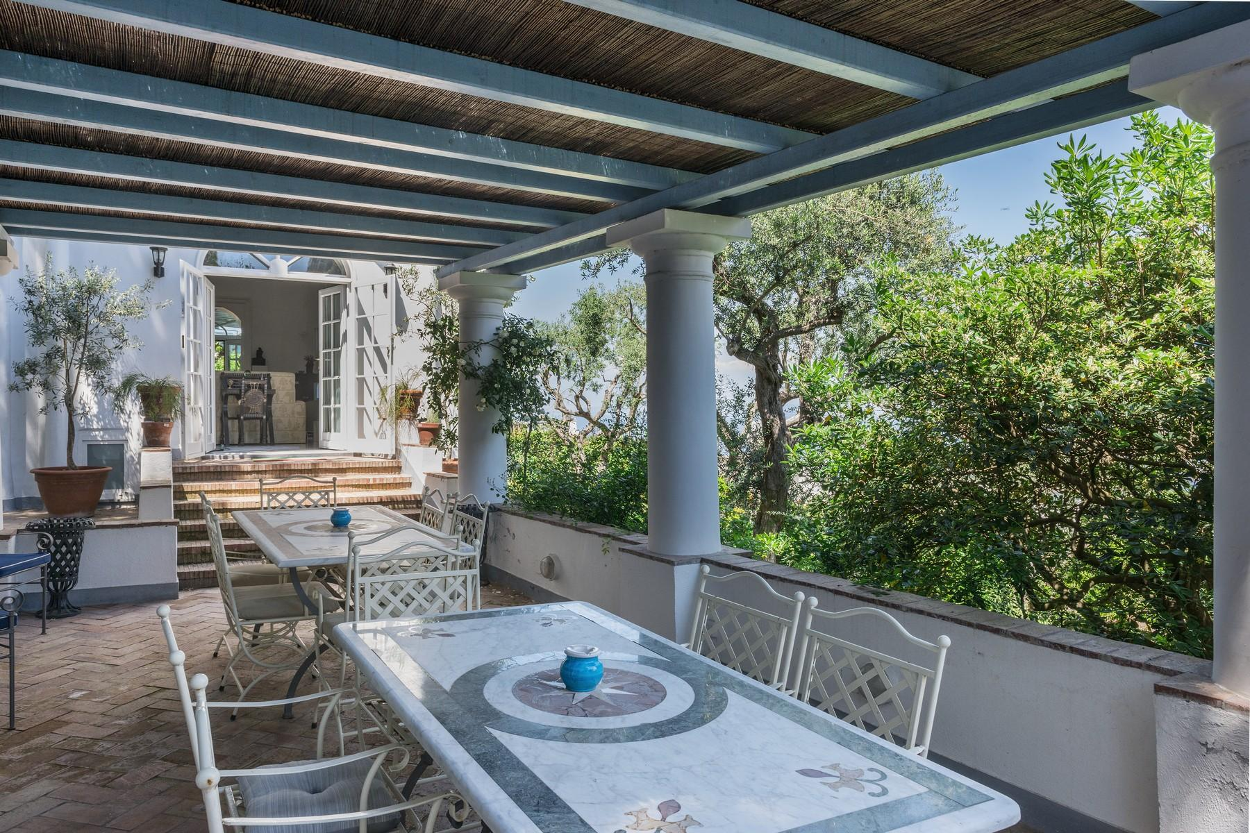 Amazing villa overlooking the sea and the most beautiful garden in the island - 10
