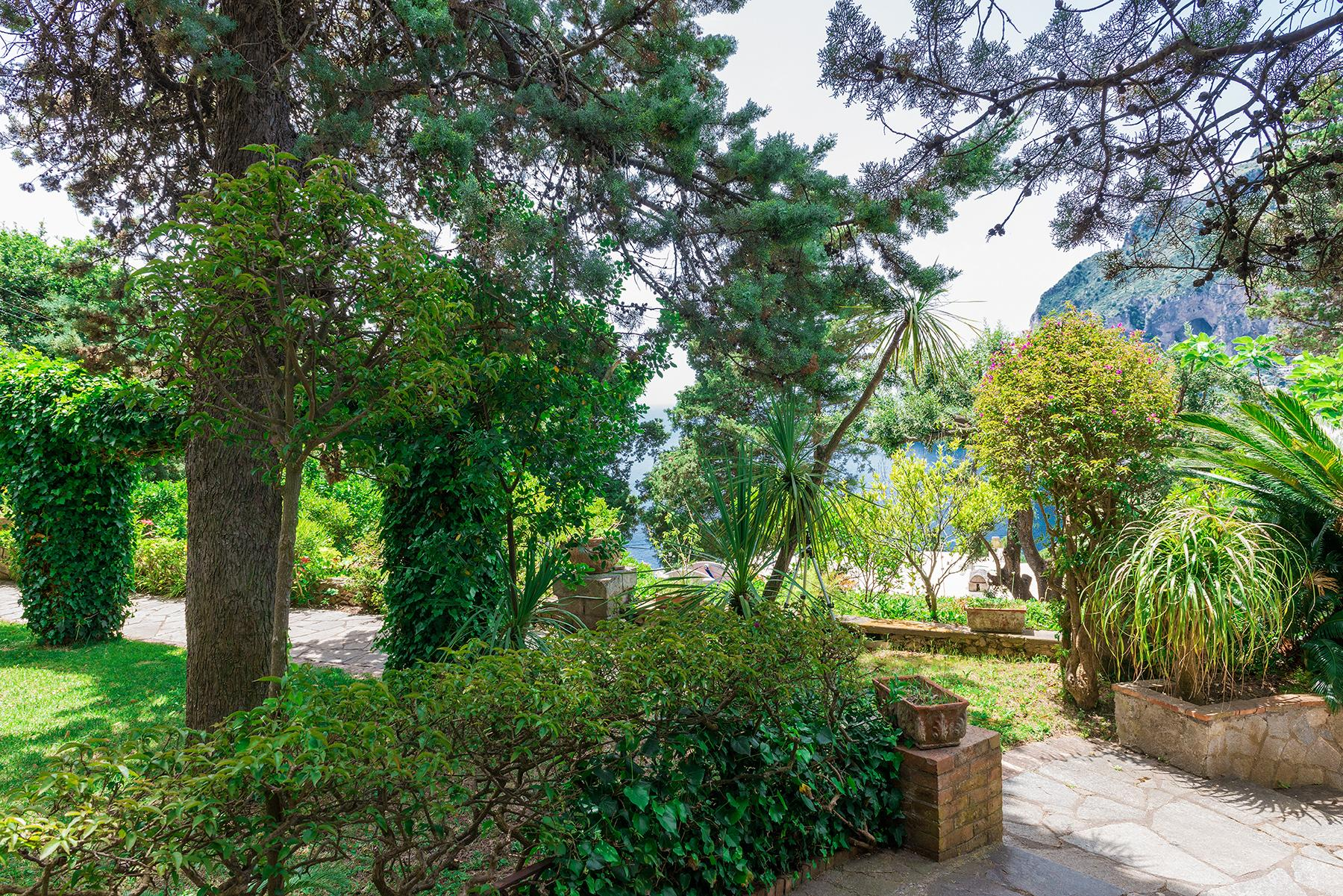 Capri岛中心的别墅 - 18