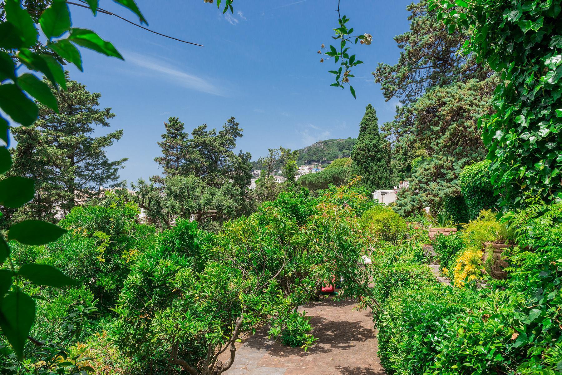 Capri岛中心的别墅 - 20