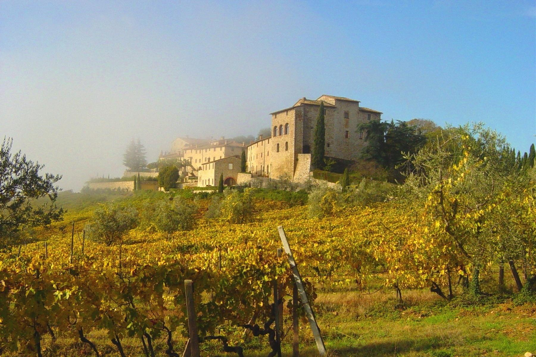 Historic castle with vineyard in 'Chianti' - 1