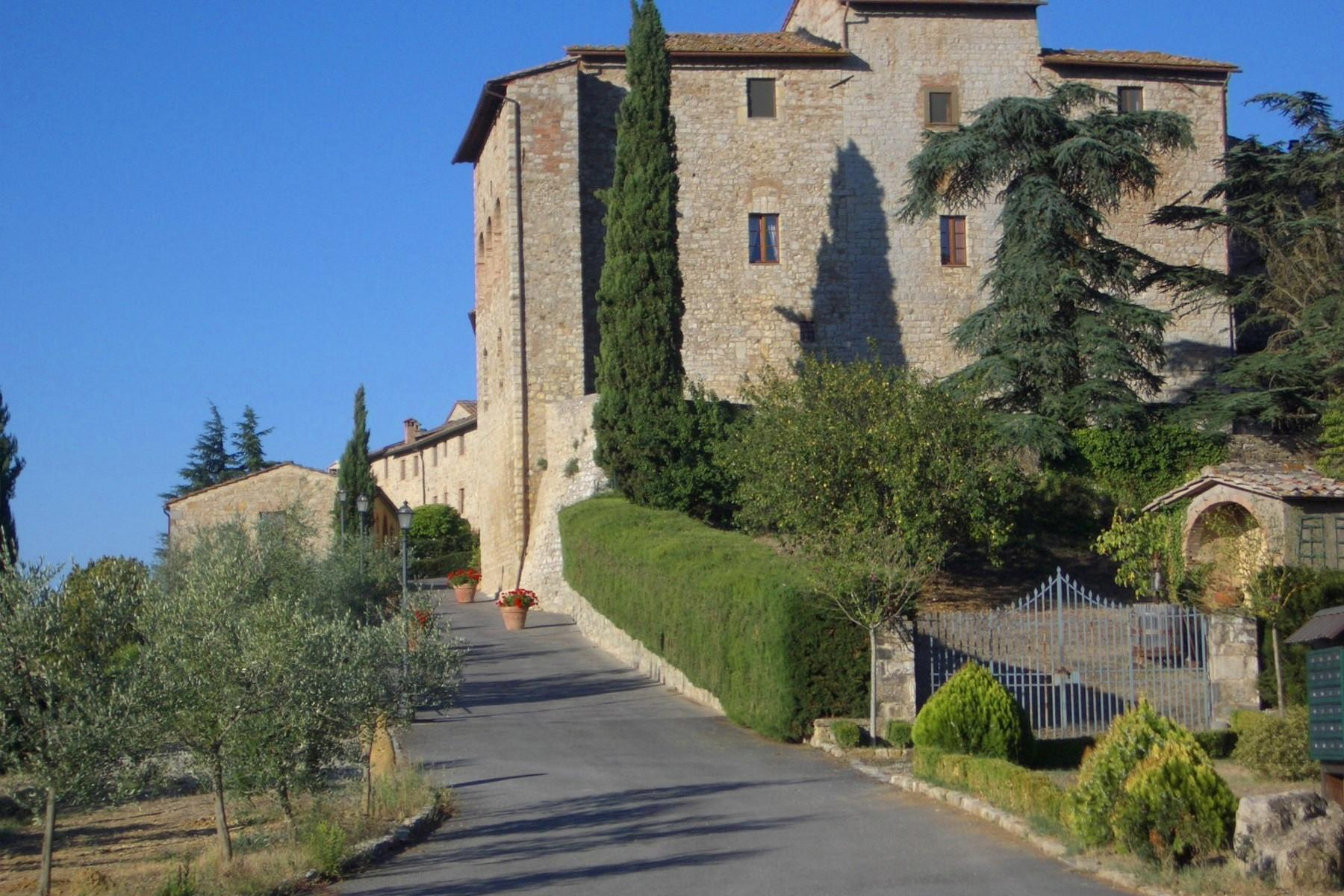 Historic castle with vineyard in 'Chianti' - 2