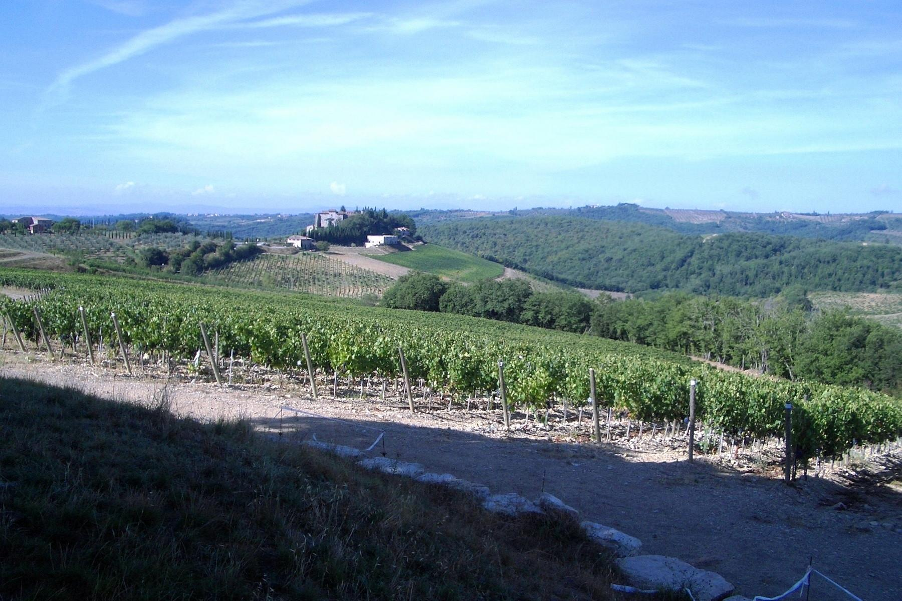 Historic castle with vineyard in 'Chianti' - 6