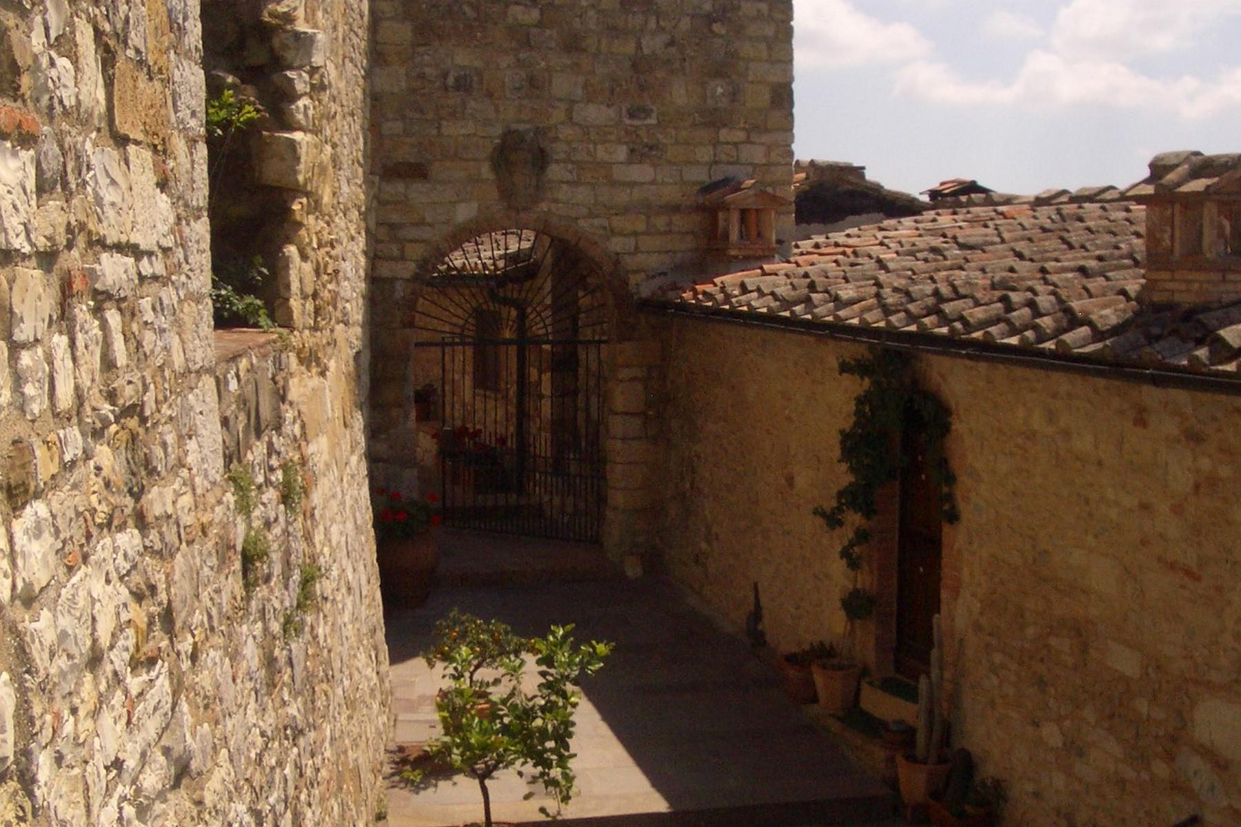 Historic castle with vineyard in 'Chianti' - 7