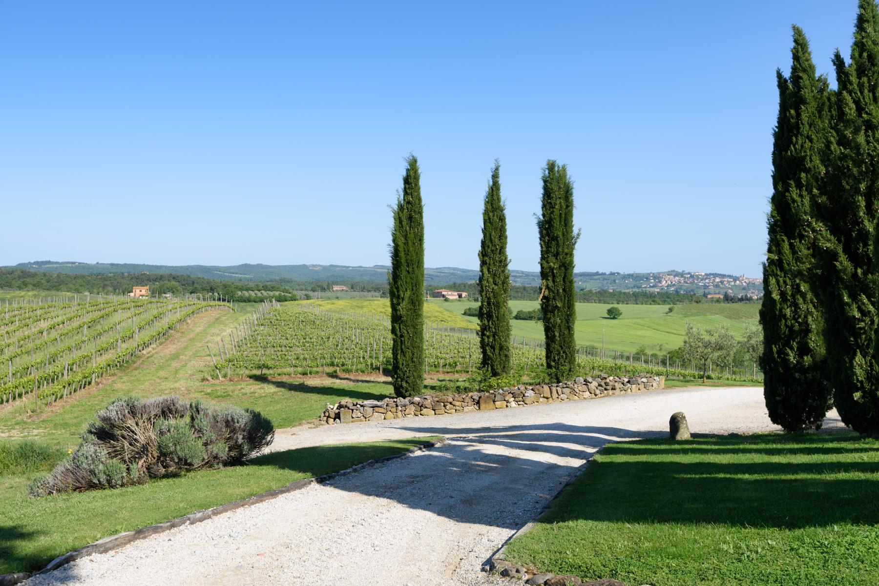 Tuscan countryhouse with 2,5 ha of vineyards - 23