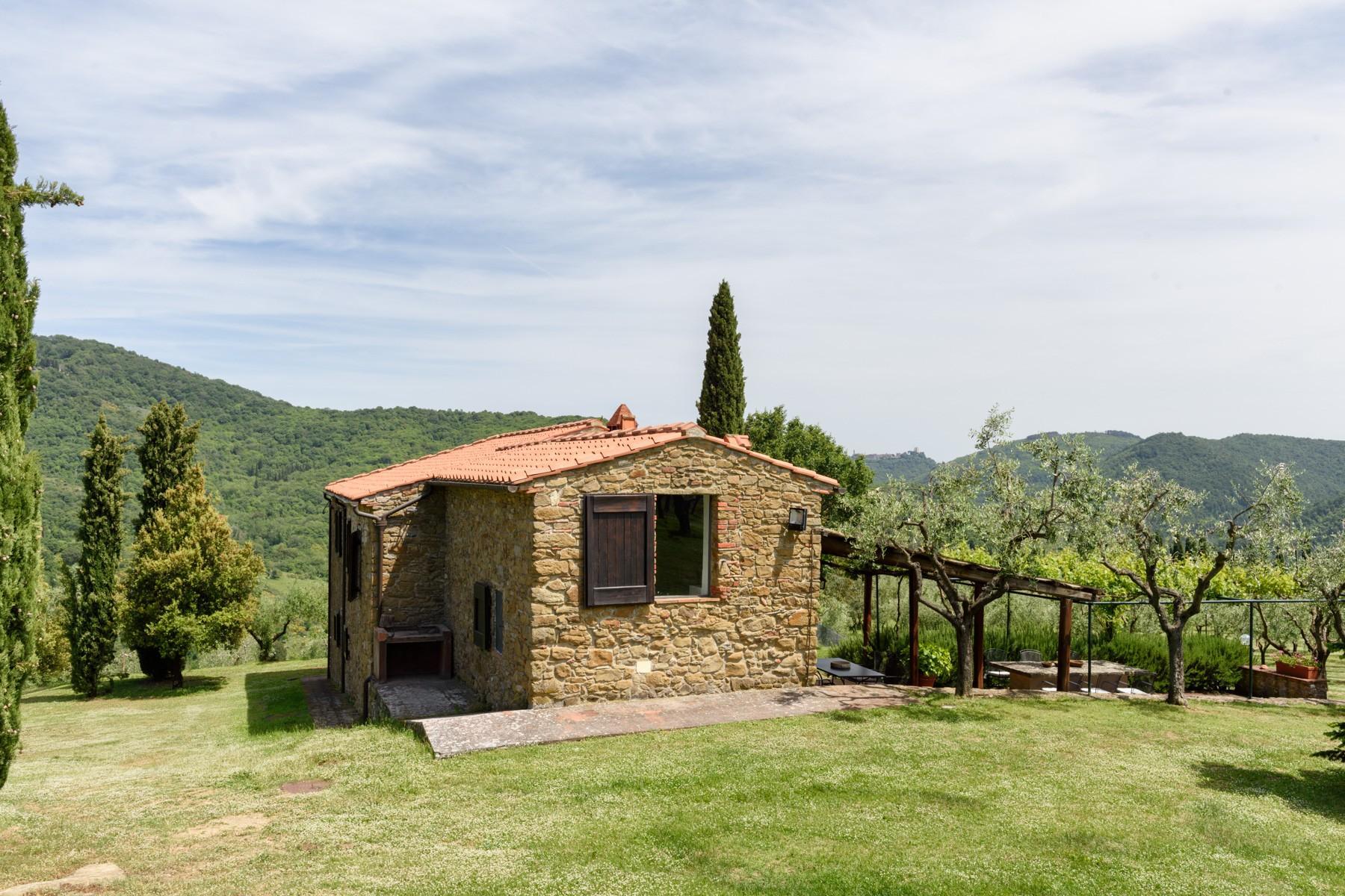 Magnificent property in Chianti Aretino - 4