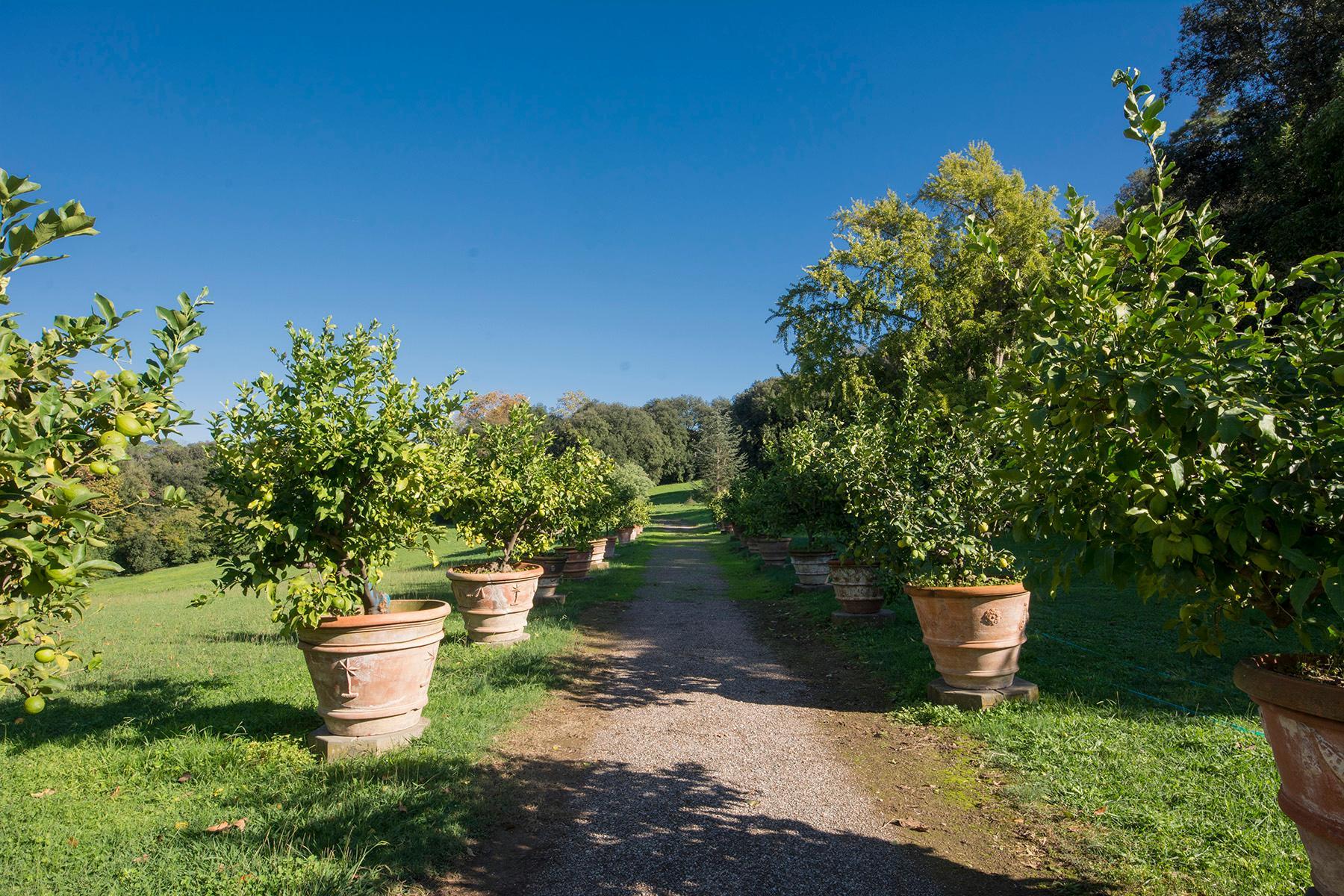 Magnifique villa historique dans la campagne de Lucca - 17