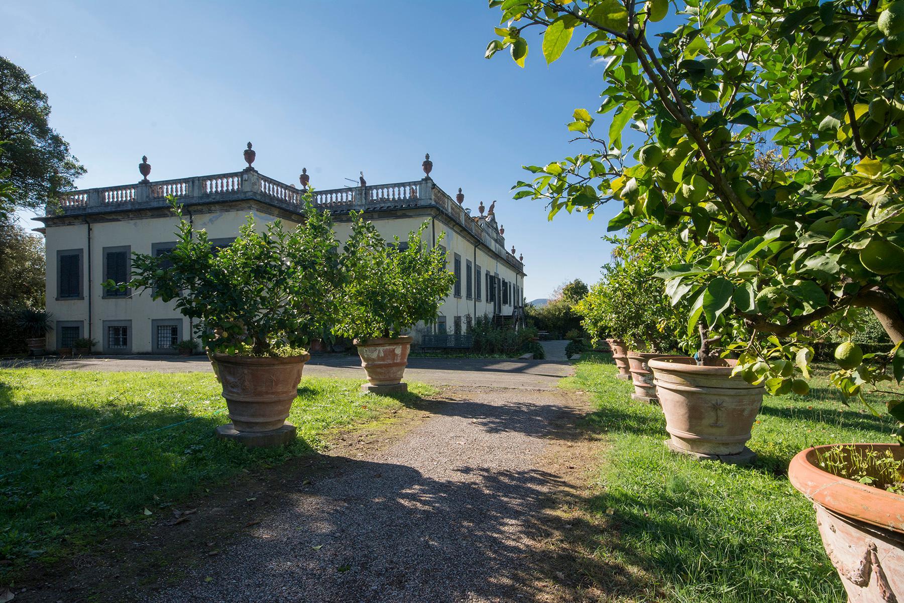Magnifique villa historique dans la campagne de Lucca - 18