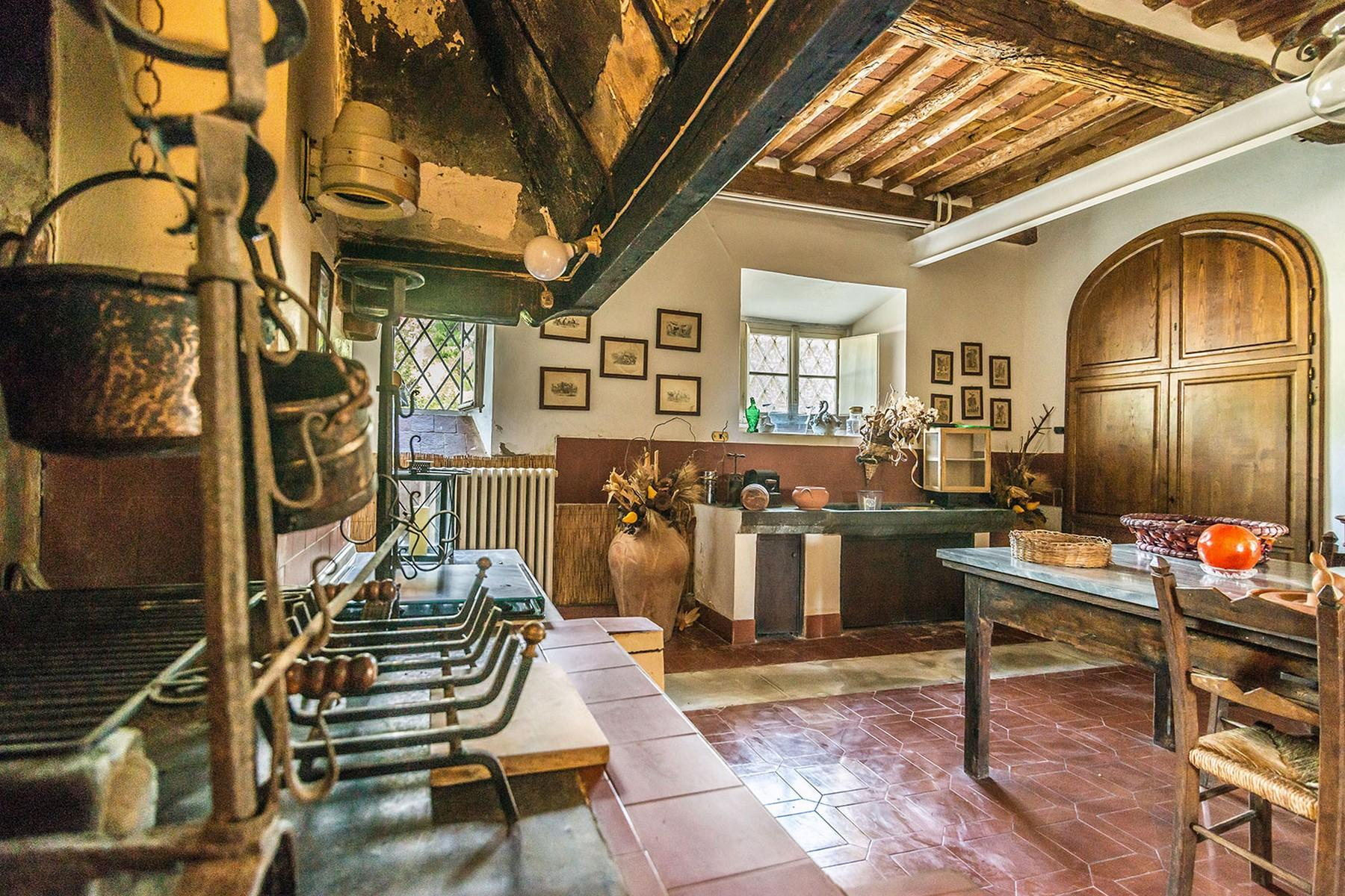 Incomparable historic mansion in Lucchesia - 23