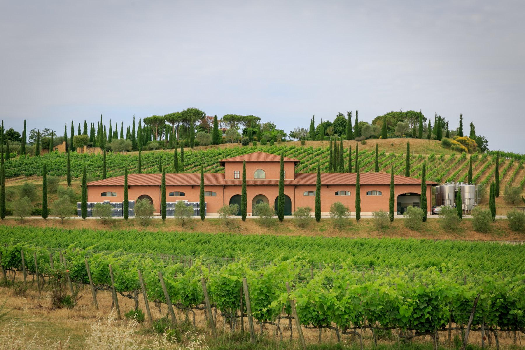 Wonderful wine estate with spectacular views of Montepulciano - 1