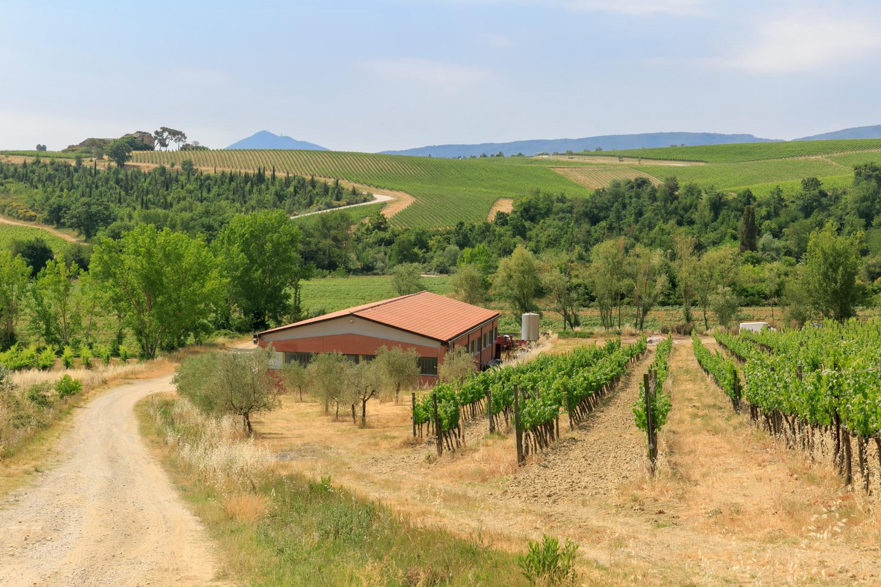 Wonderful wine estate with spectacular views of Montepulciano - 6