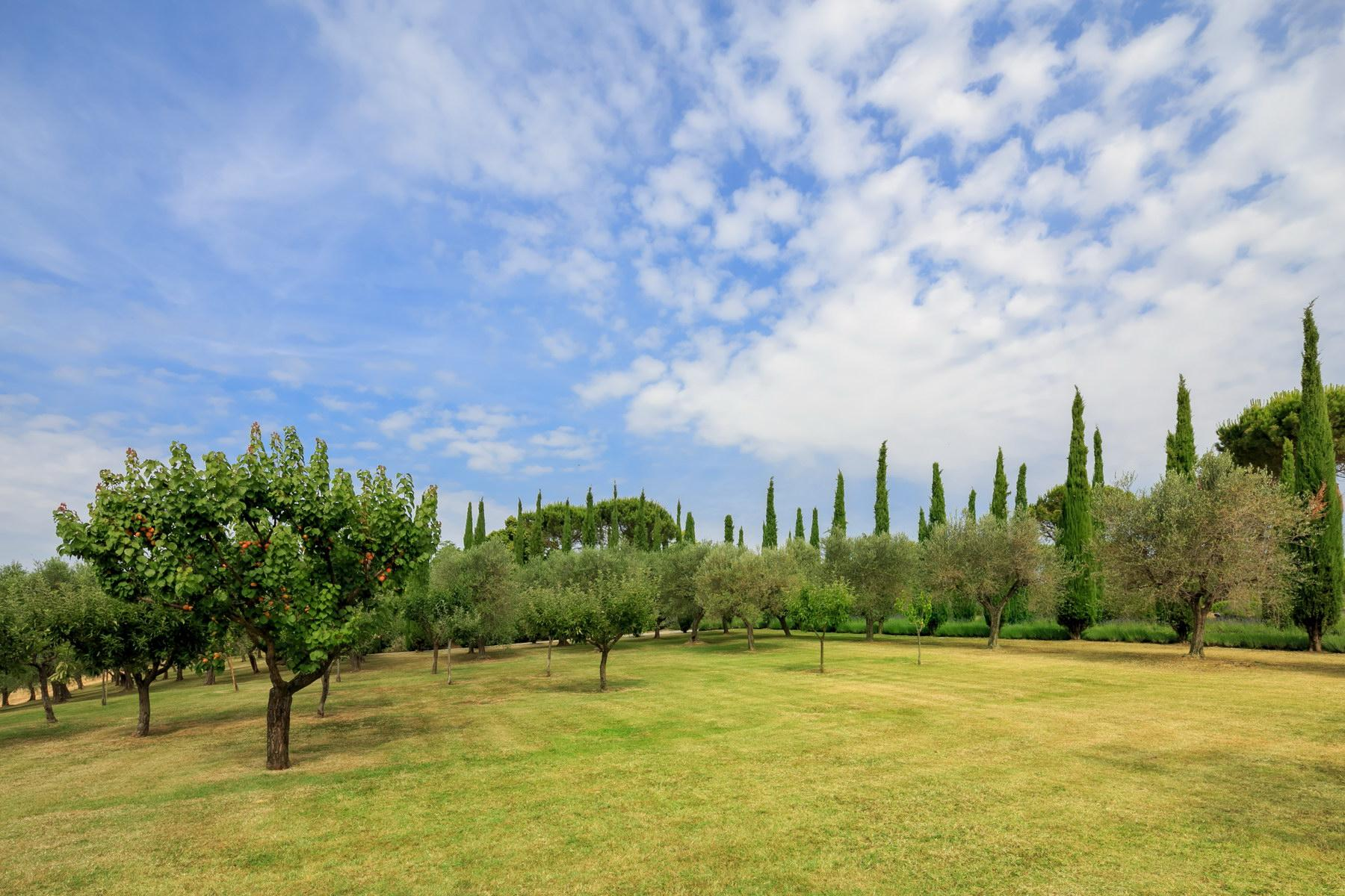 Wonderful wine estate with spectacular views of Montepulciano - 8
