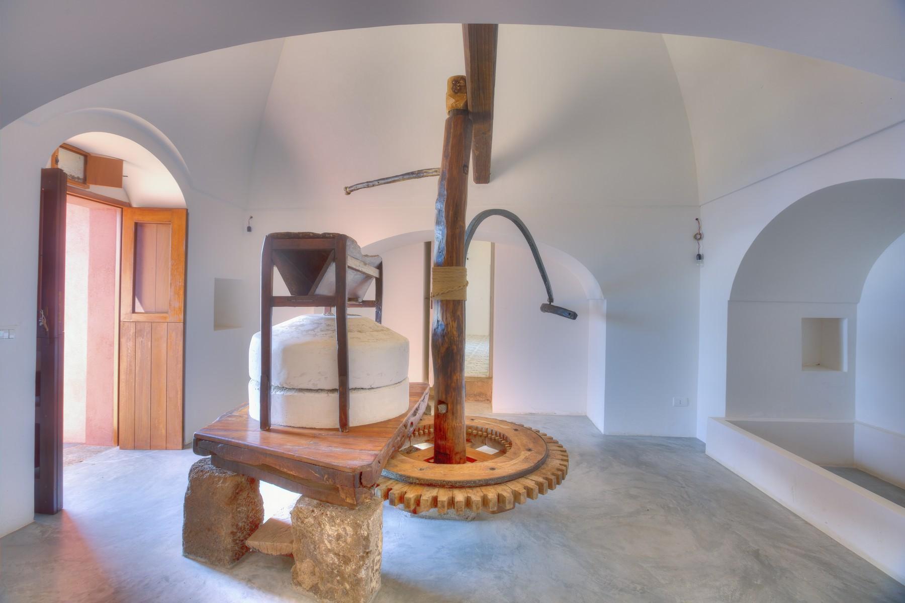 独特的Pantelleria岛上的纯净天堂 - 10