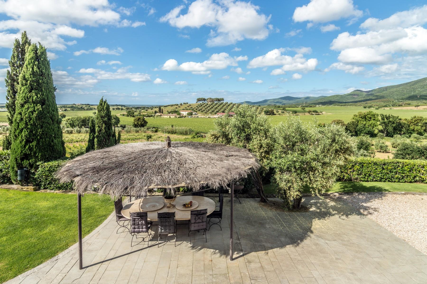 Inspiring tuscan estate with vineyards - 8