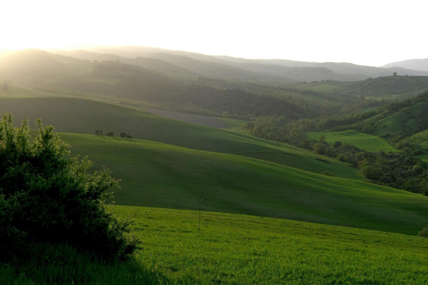 沉浸于绿色绵延的山丘上的古典别墅 - 12