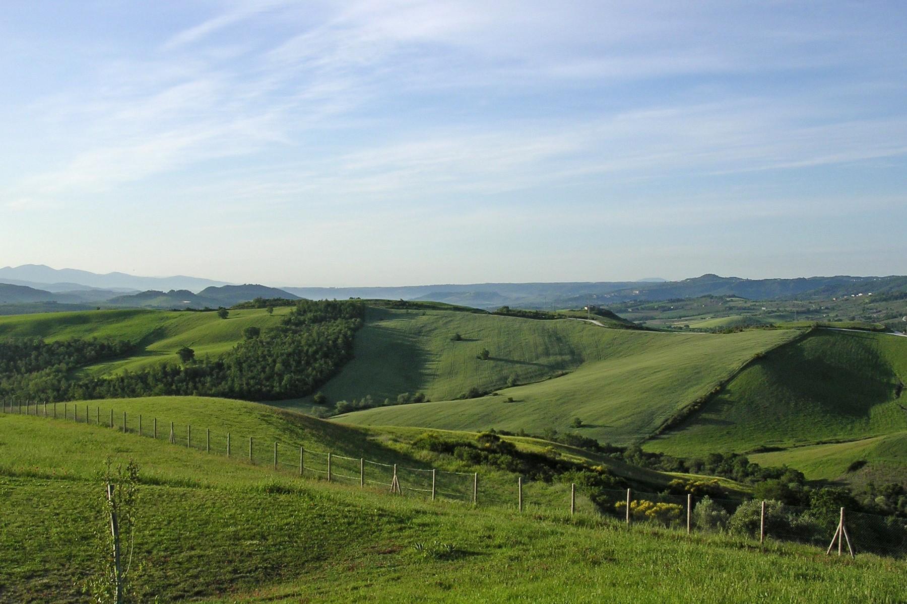 沉浸于绿色绵延的山丘上的古典别墅 - 13