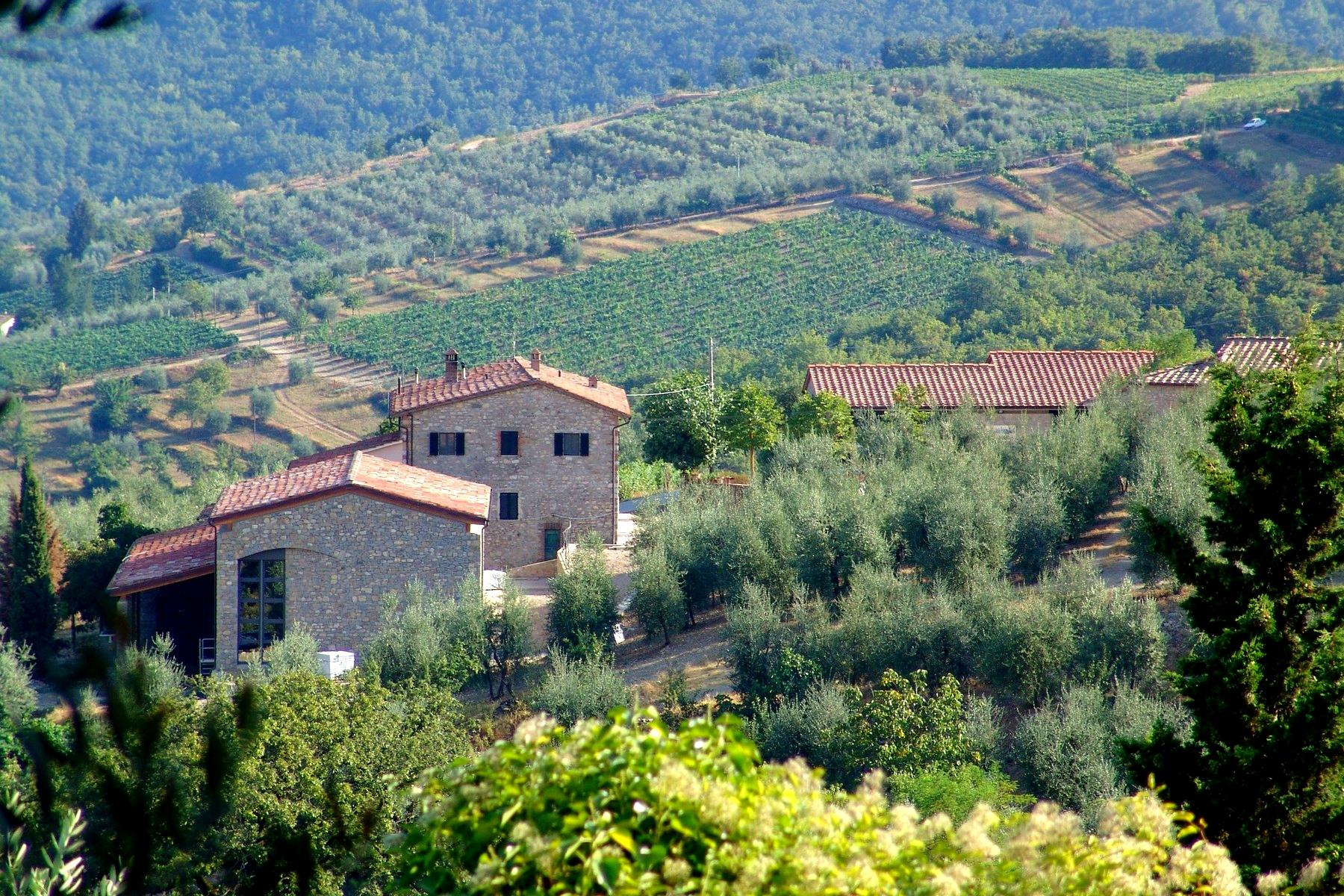 Residential property and boutique winery in the heart of Chianti - 3