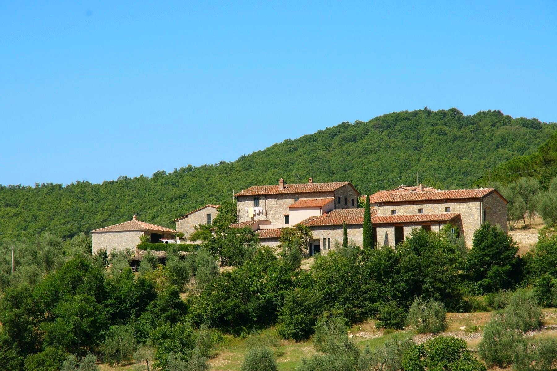 Residential property and boutique winery in the heart of Chianti - 5