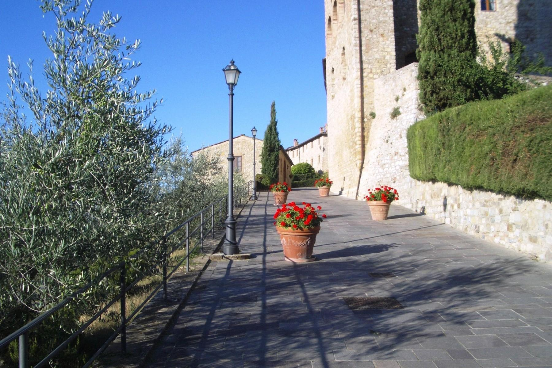 Historic castle with vineyard in 'Chianti' - 4