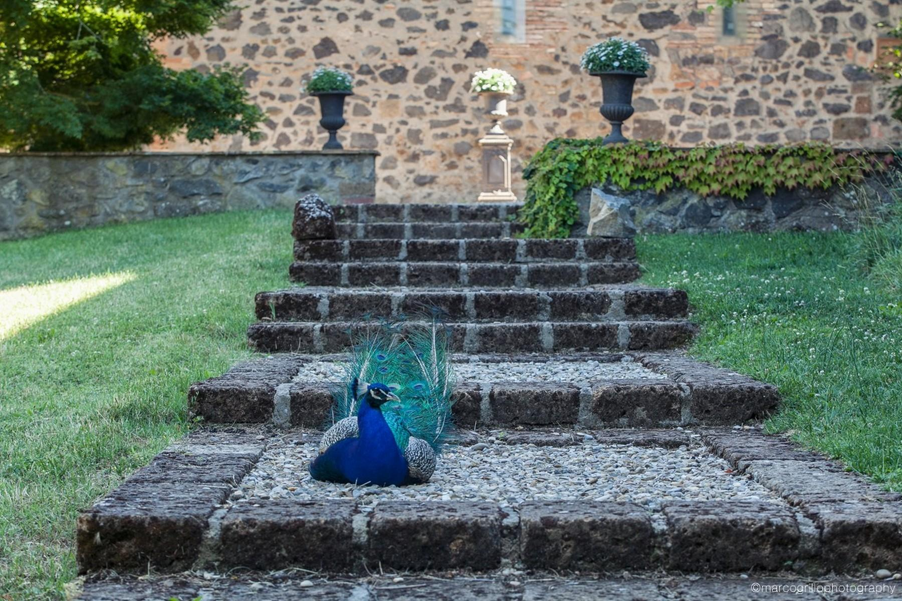 Средневековое аббатство в сердце Умбрии, Италия - 4