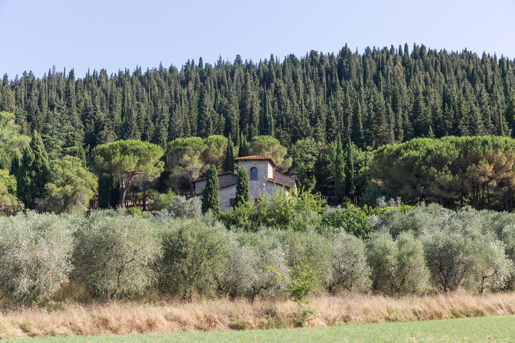 Wonderful farmhouse in the countryside near Florence - 10