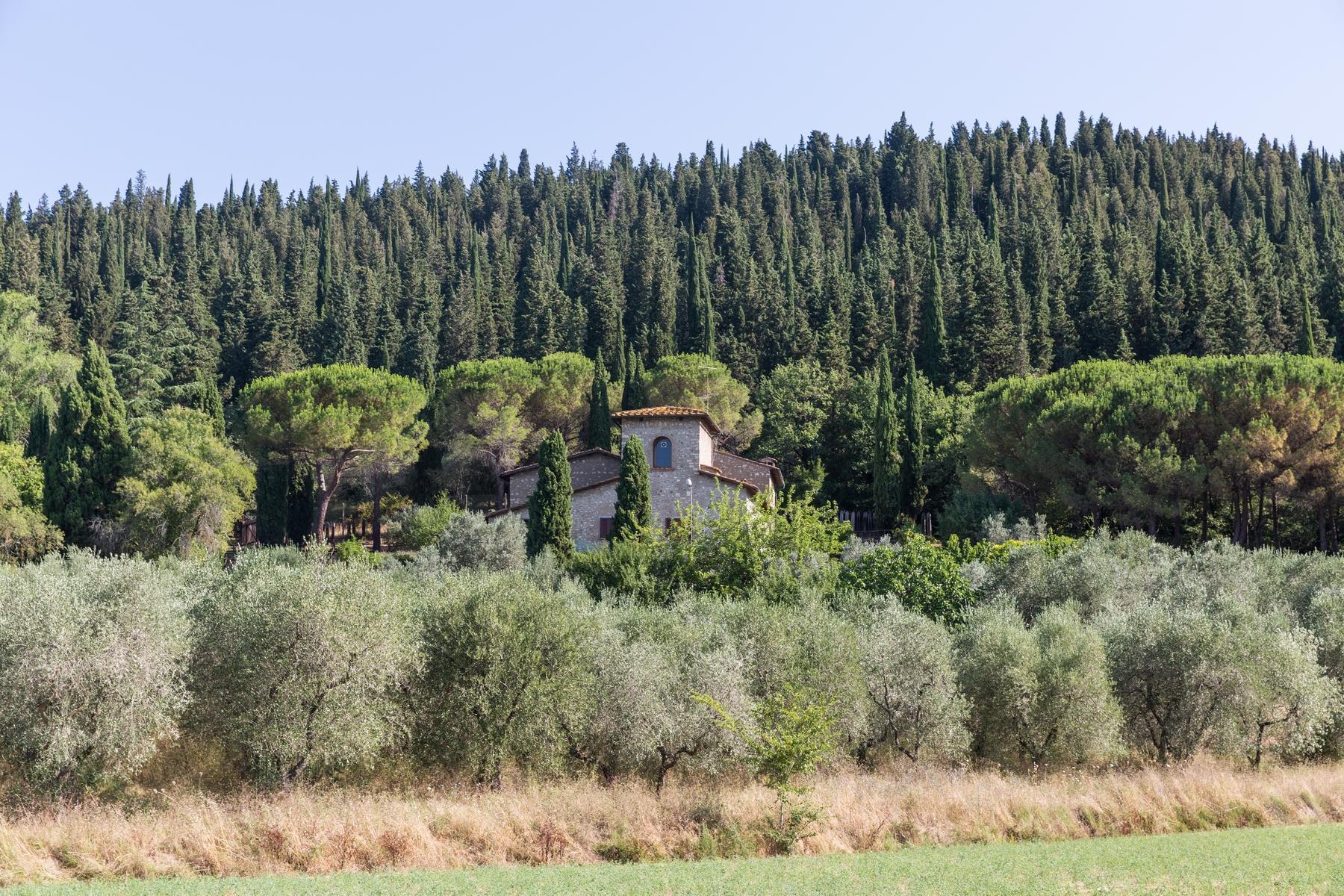 Замечательный загородный дом в сельской местности недалеко от Флоренции - 10