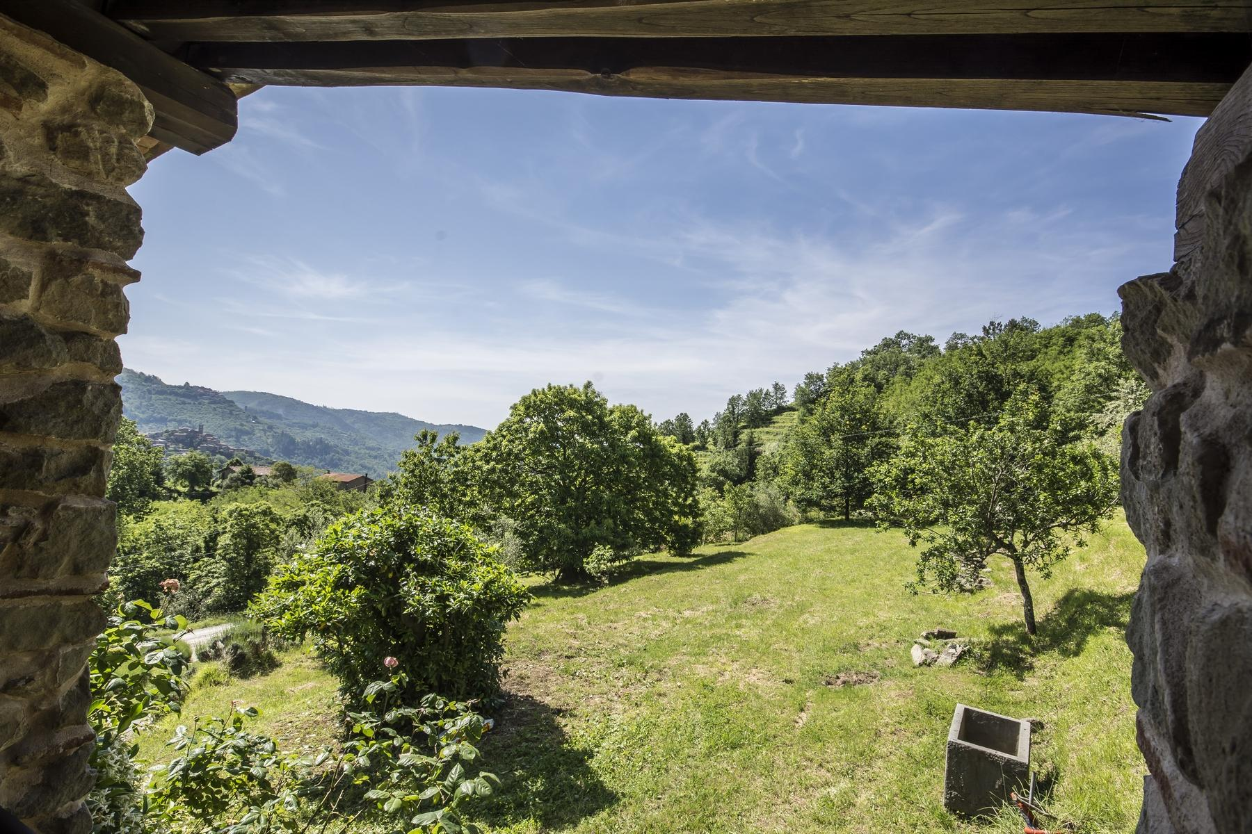Medieval farmhouse immersed in the green of the Tuscan hills - 3