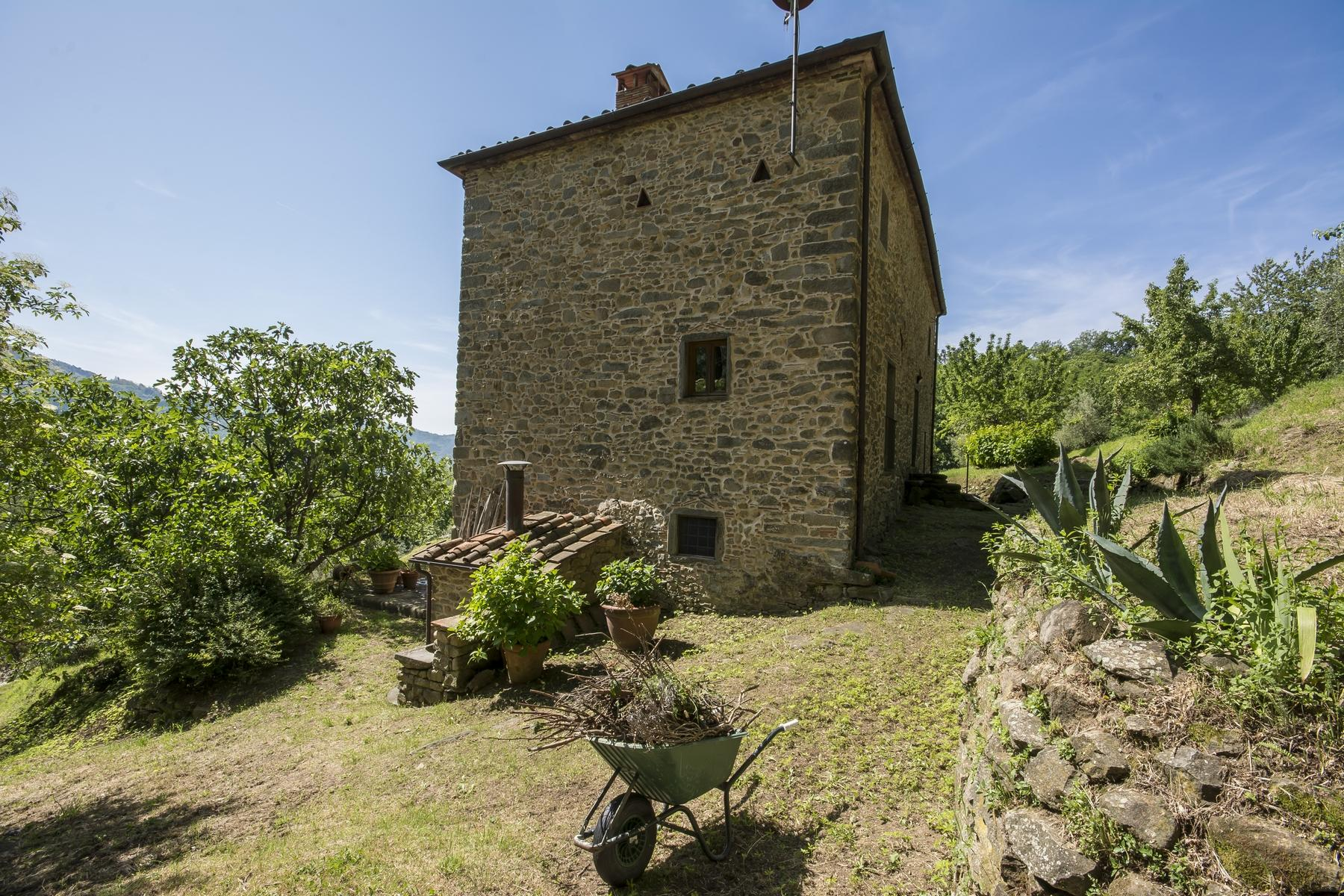 Medieval farmhouse immersed in the green of the Tuscan hills - 19