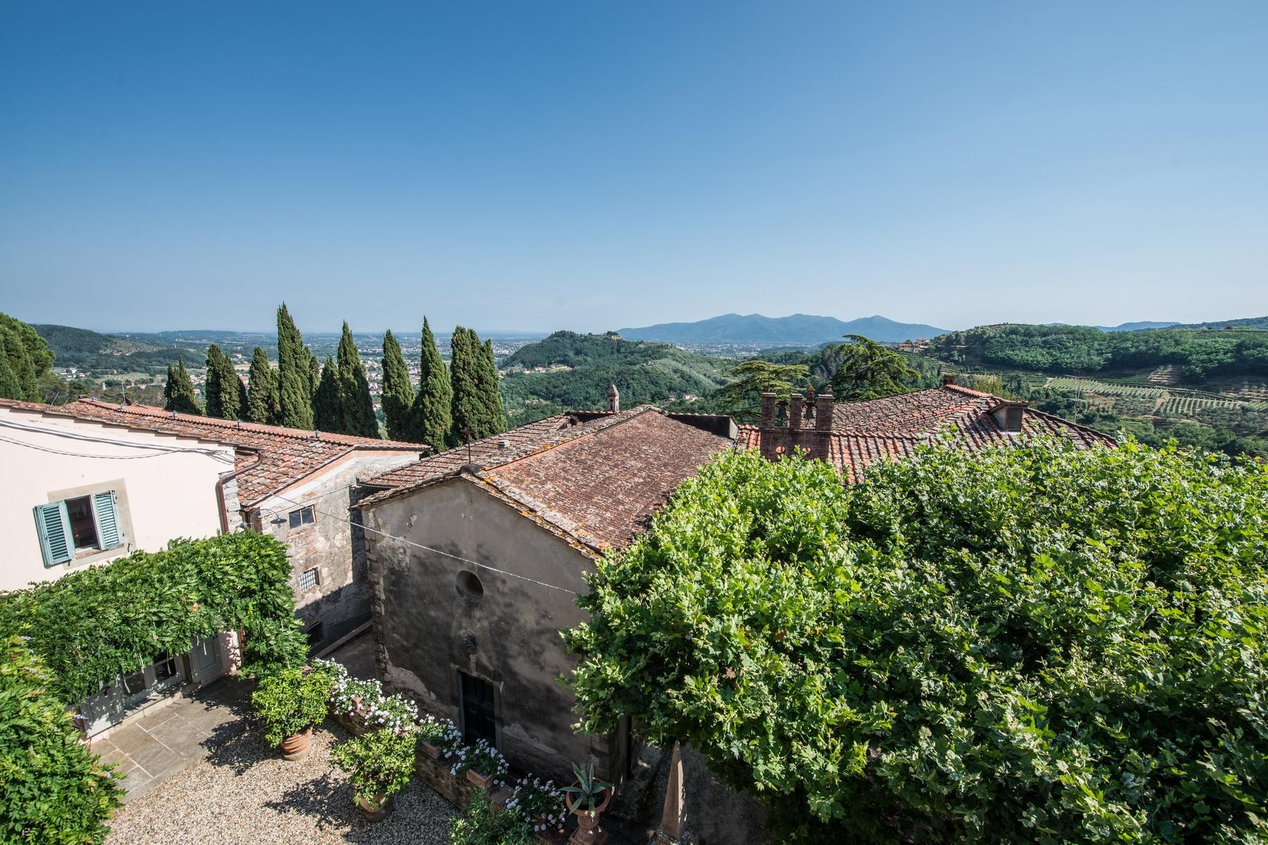 邻近Lucca的18世纪的宏伟别墅 - 21