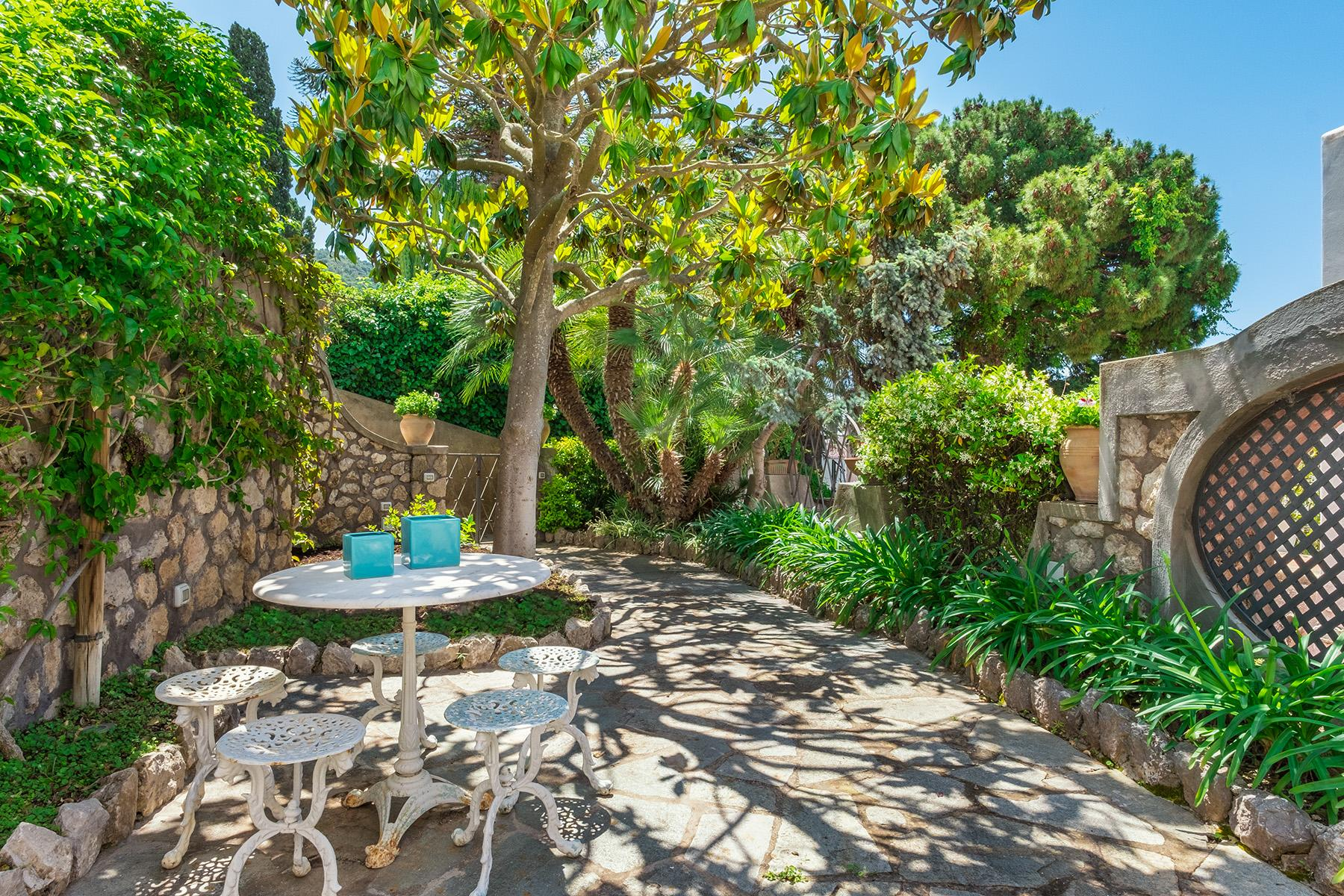 Beautiful apartamanent with garden in the centre of Capri - 1