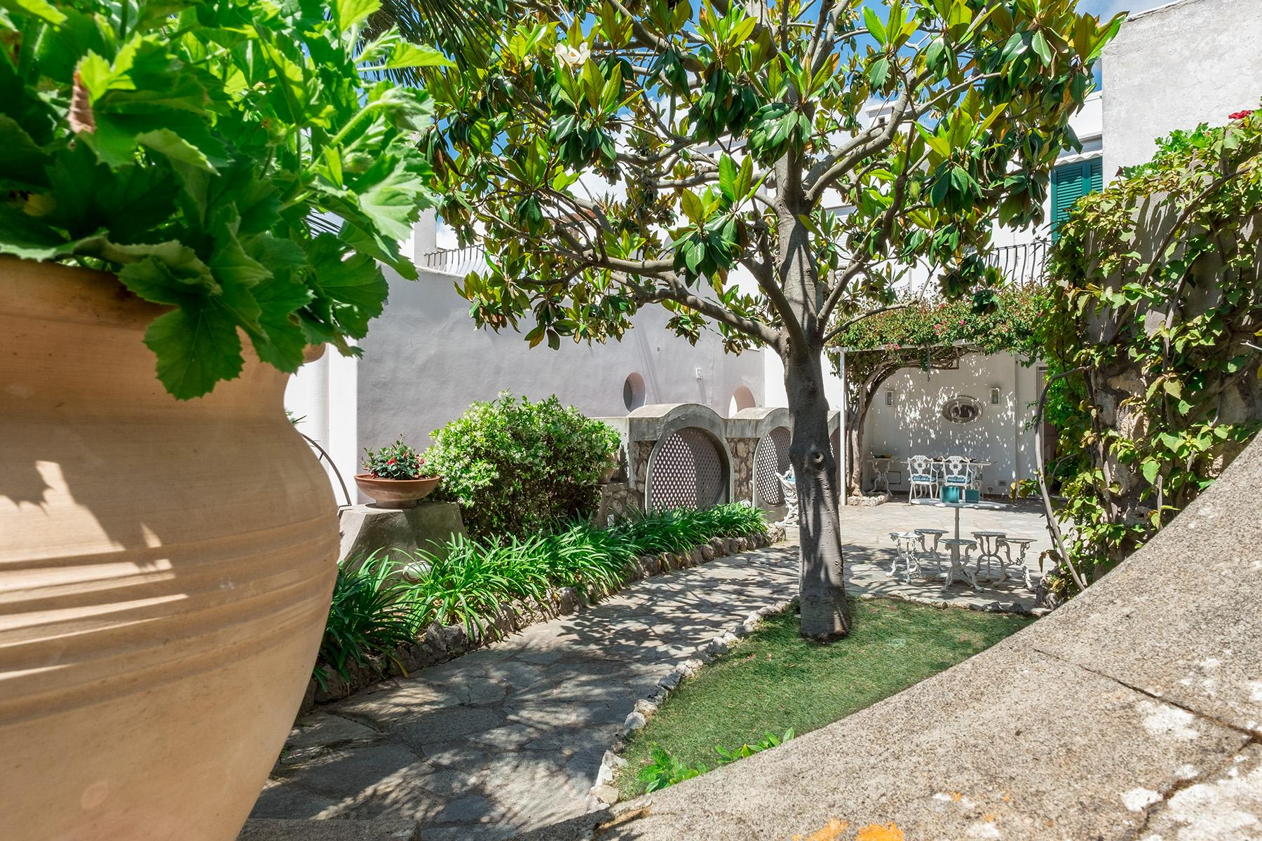 Beautiful apartamanent with garden in the centre of Capri - 3