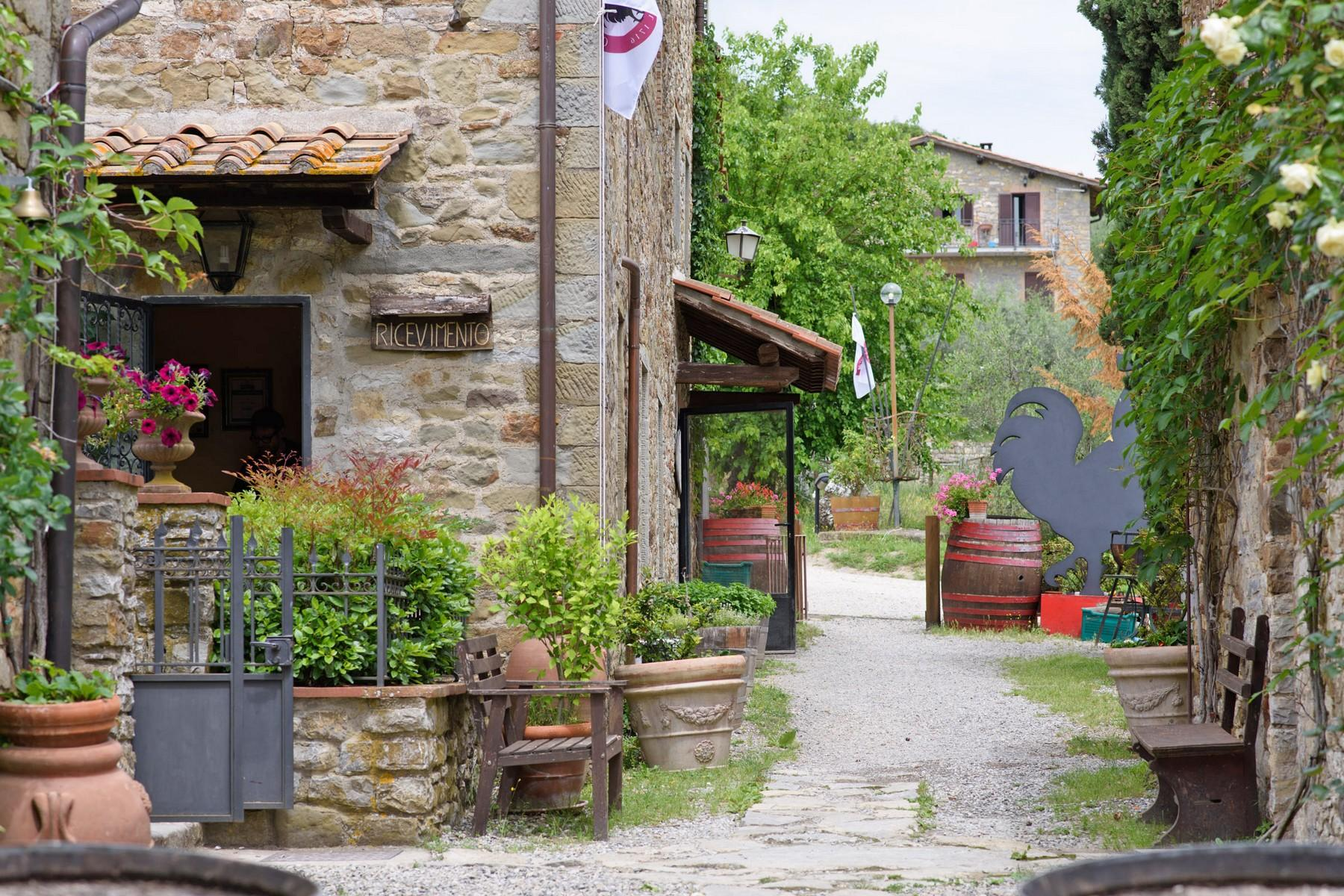 Ancient village in the heart of Chianti - 7