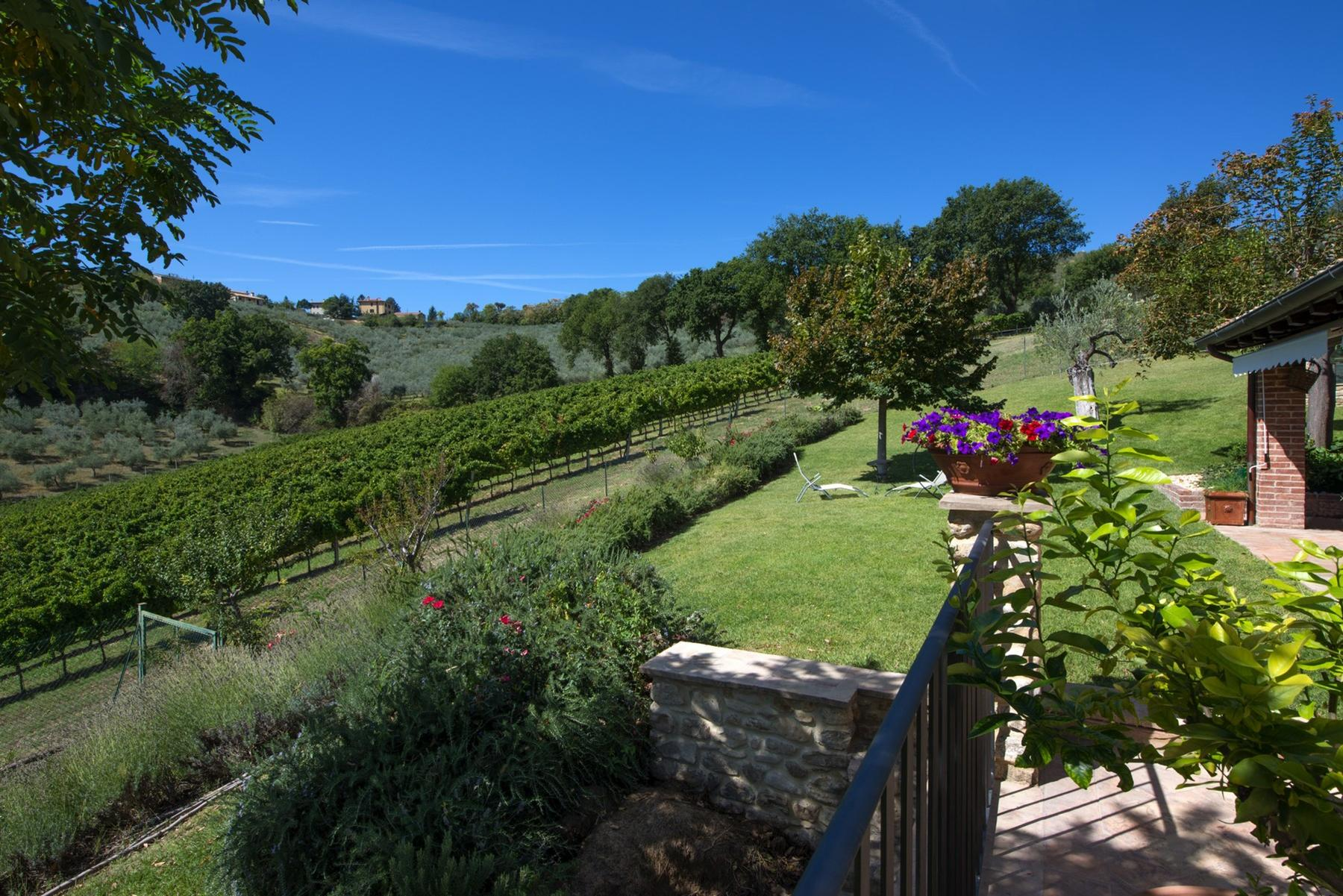 Enchanting property in the Umbrian hills - 3