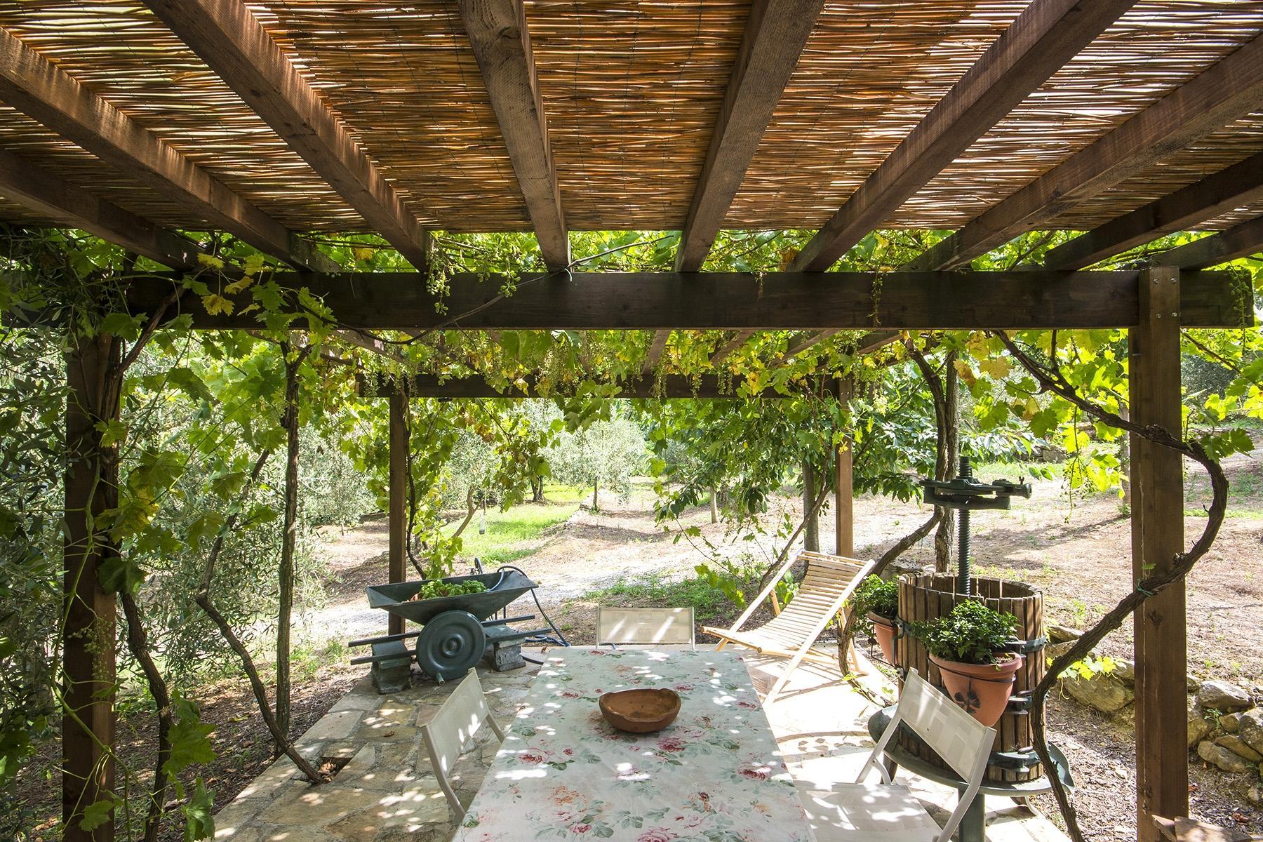 Superb property on the hills of Pisa - 20