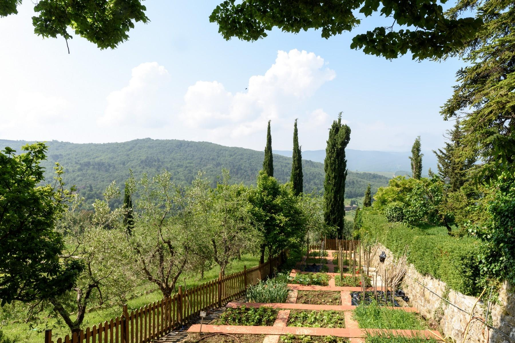Important wine estate in Chianti - 29