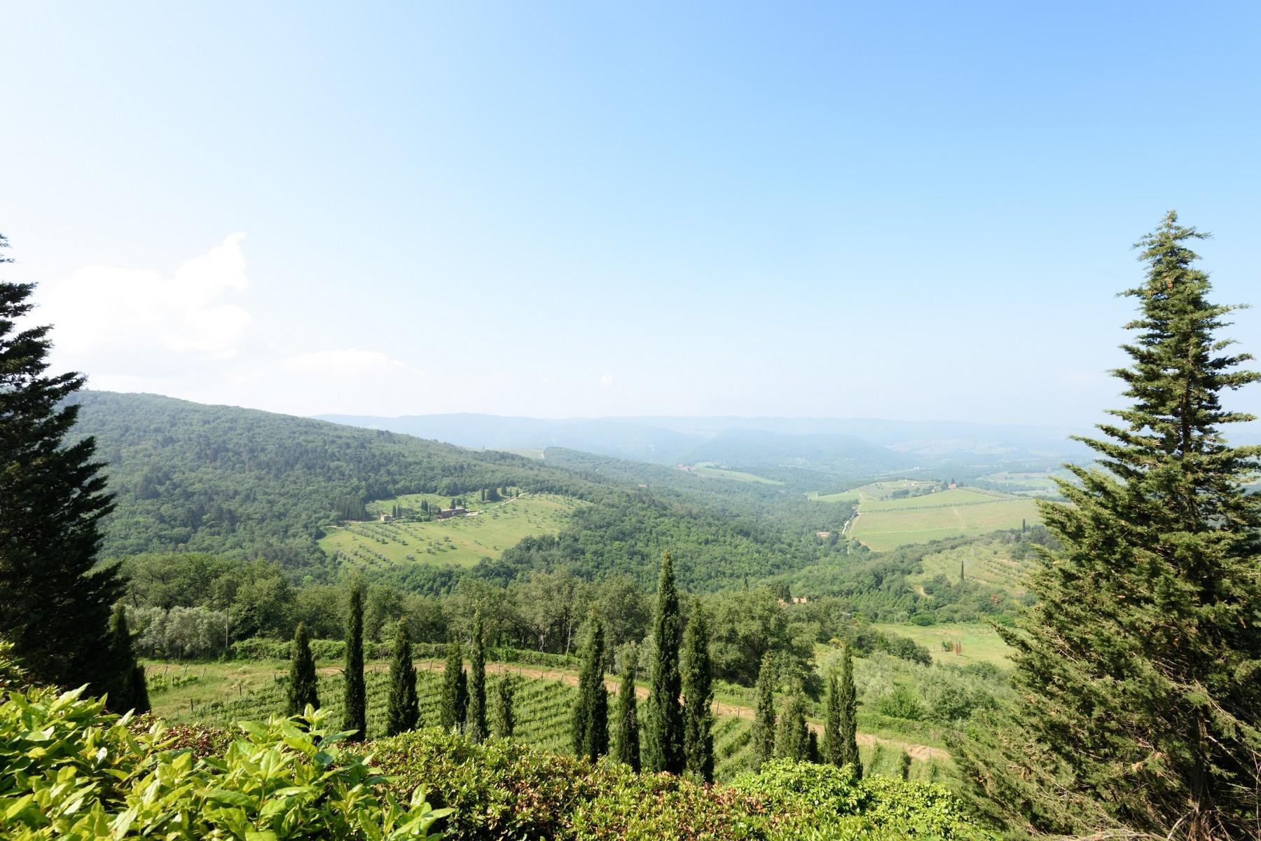 Important wine estate in Chianti - 31