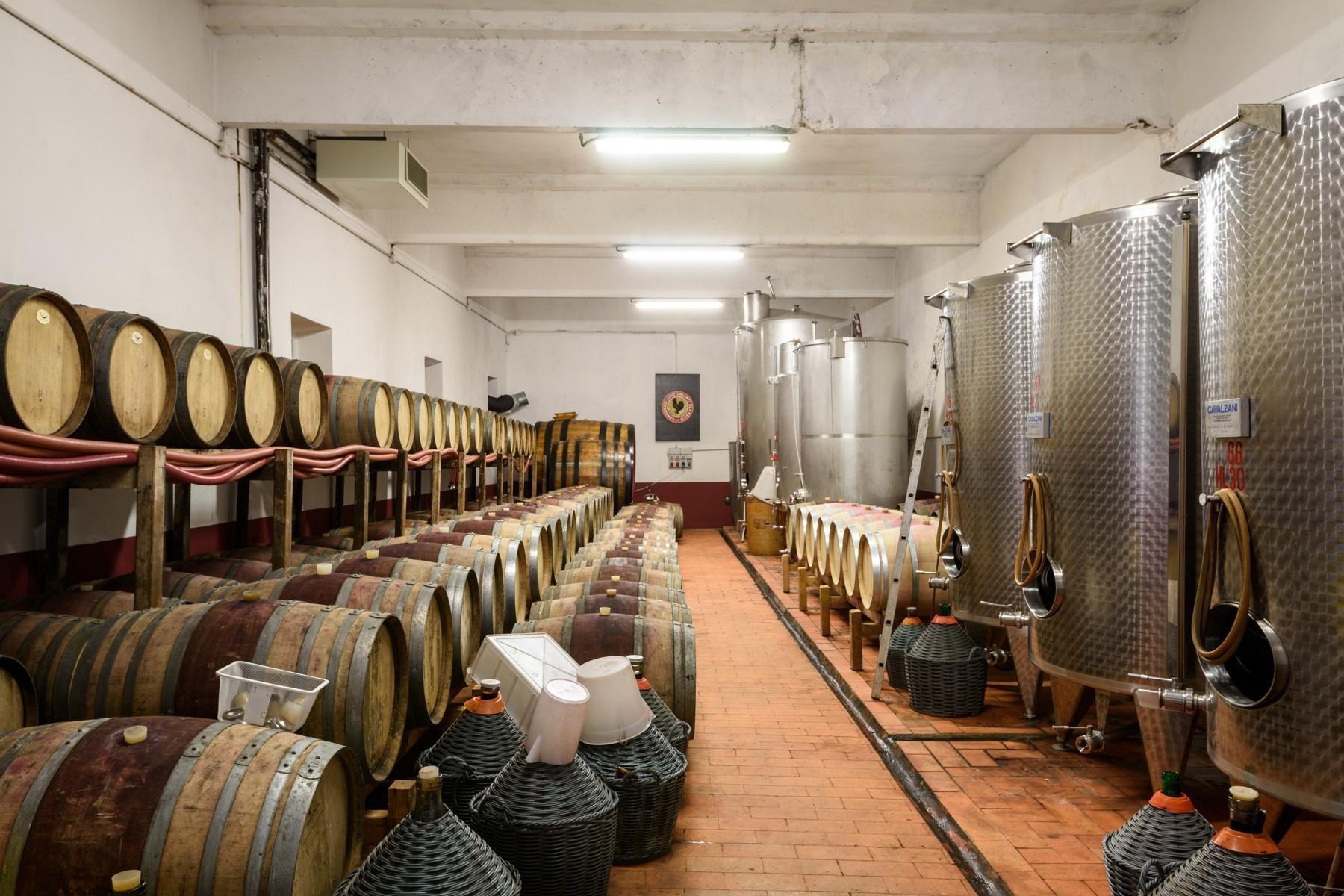 Important wine estate in Chianti - 13