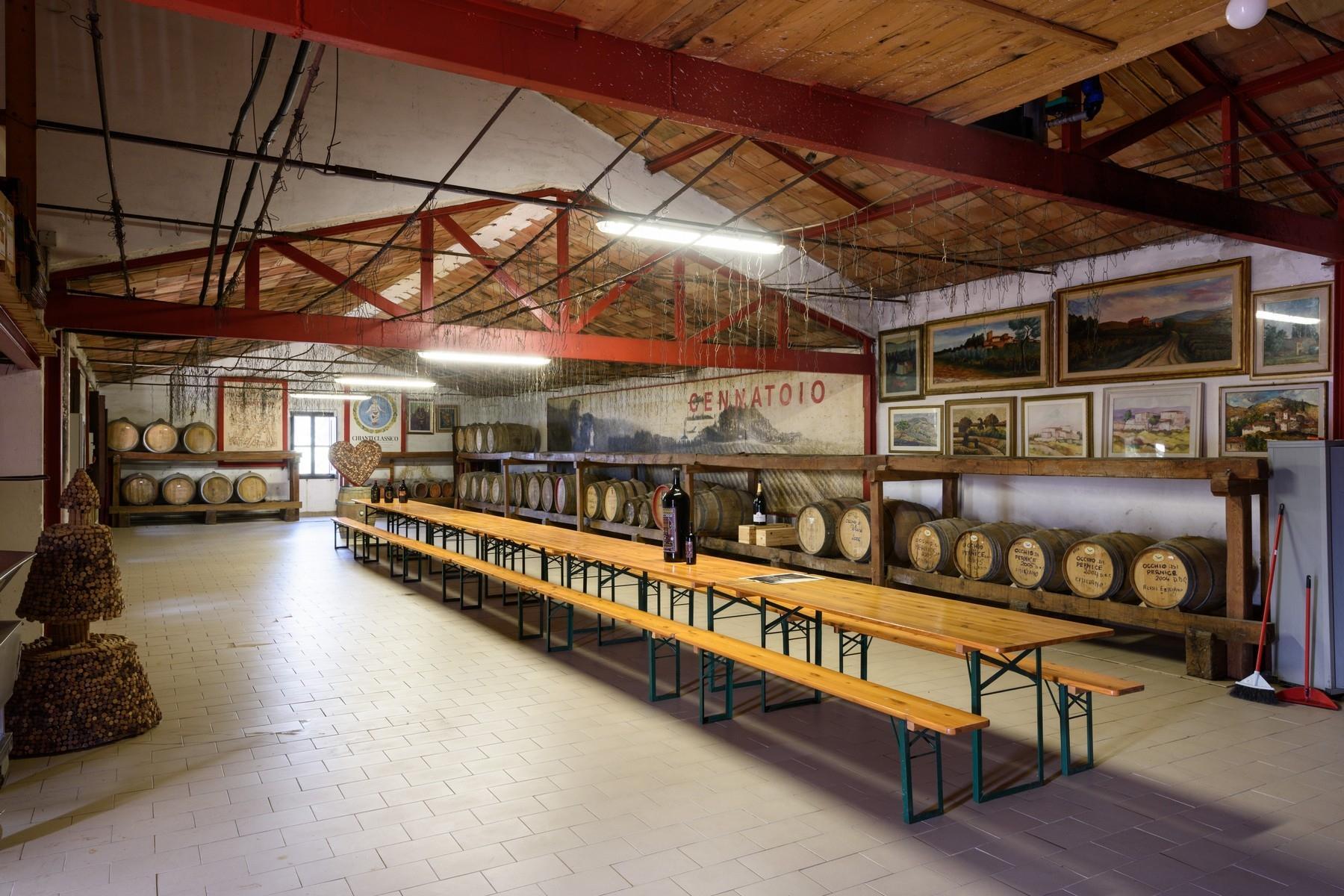 Important wine estate in Chianti - 26