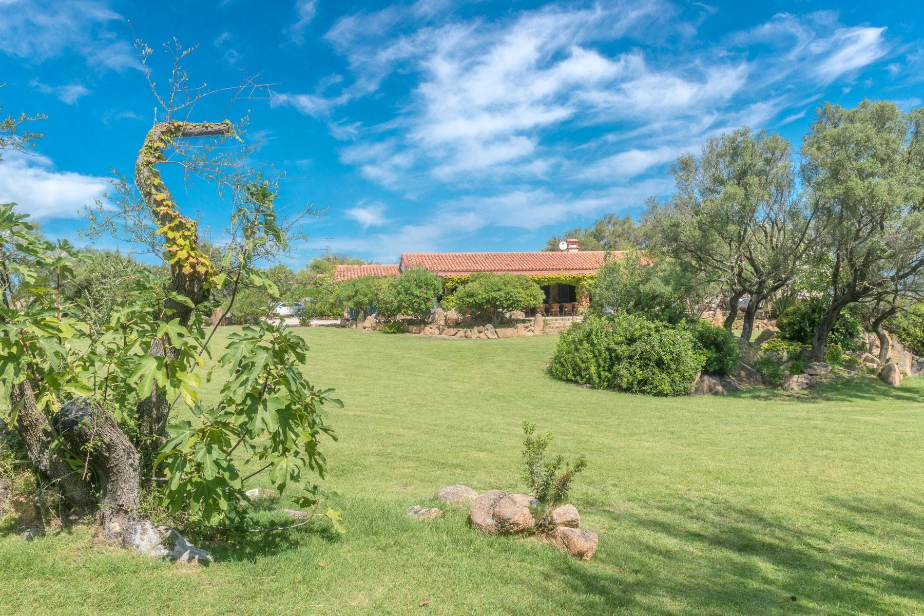 San Pantaleo Wonderful estate in the heart of Gallura - 26