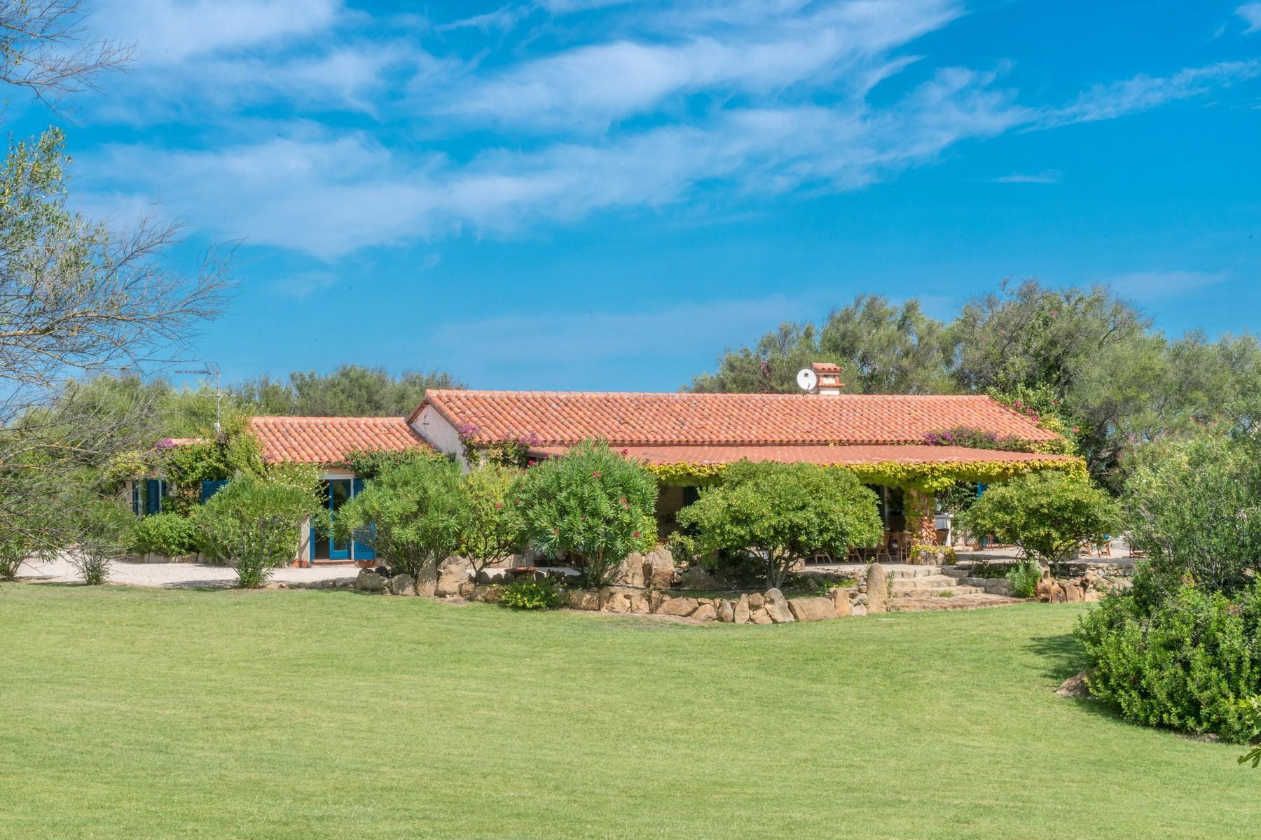 San Pantaleo Wonderful estate in the heart of Gallura - 25