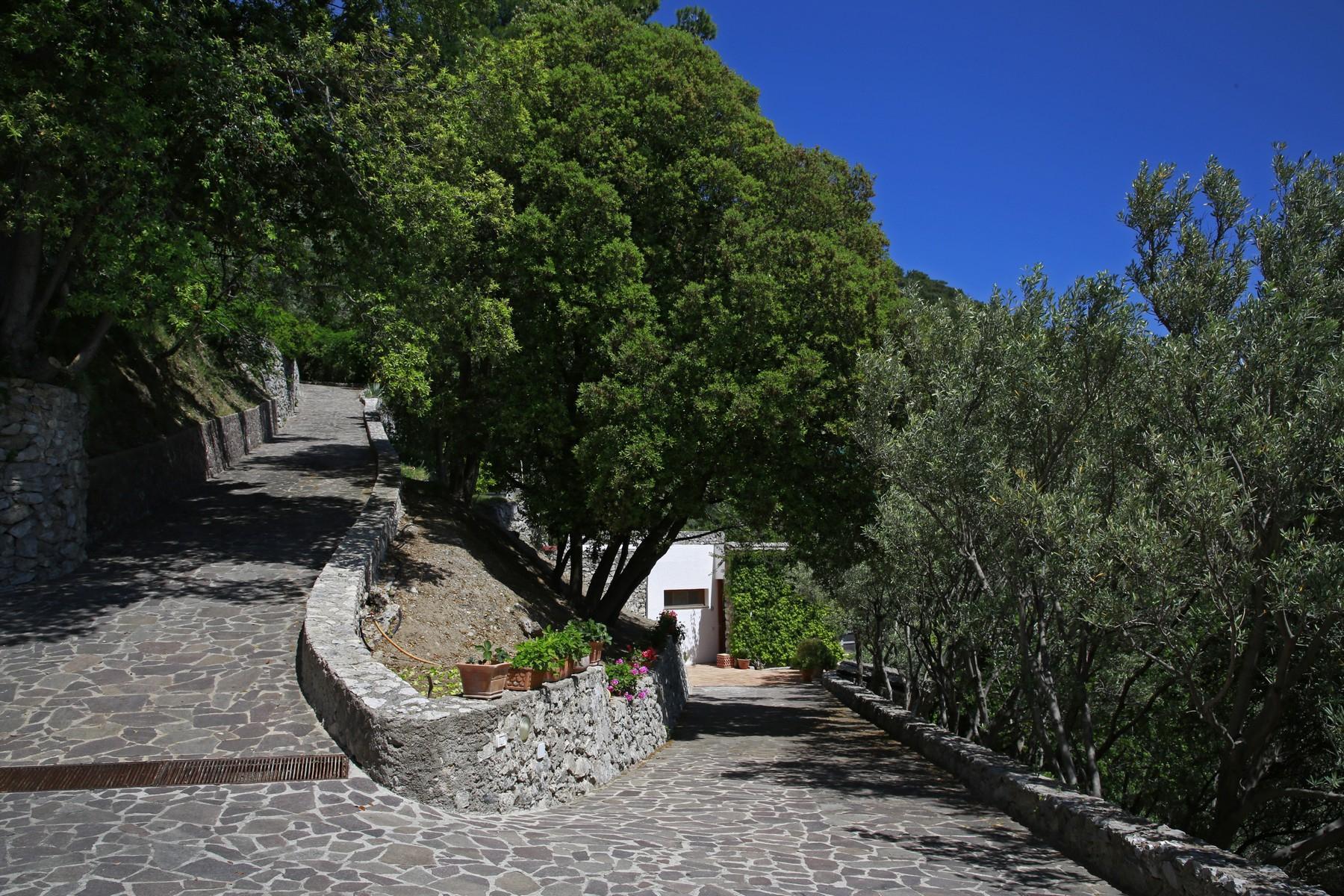 Pied-Dans-L'eau Villa an der Amalfitana Küste - 8