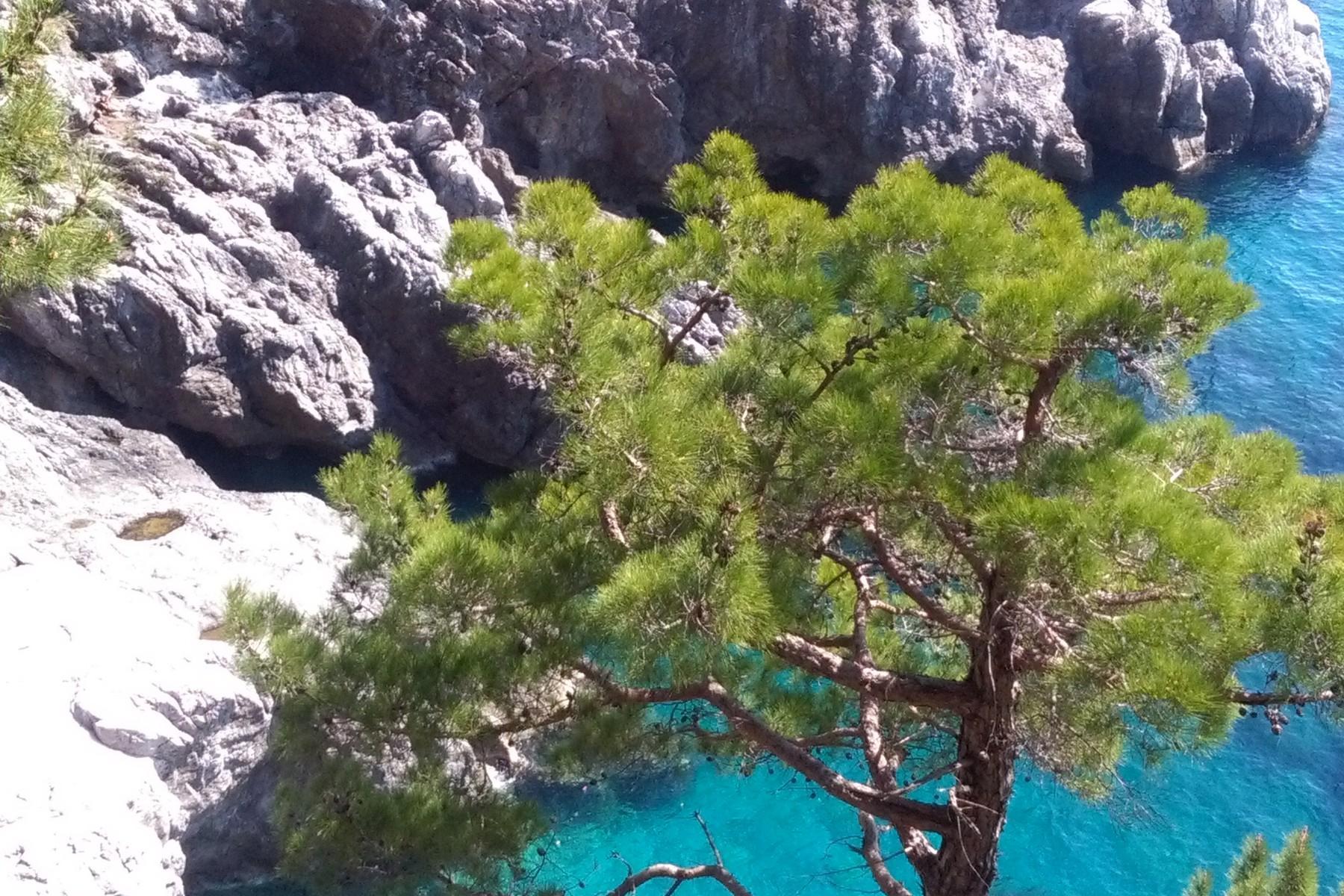 Villa pied dans l'eau in Costiera Amalfitana - 30