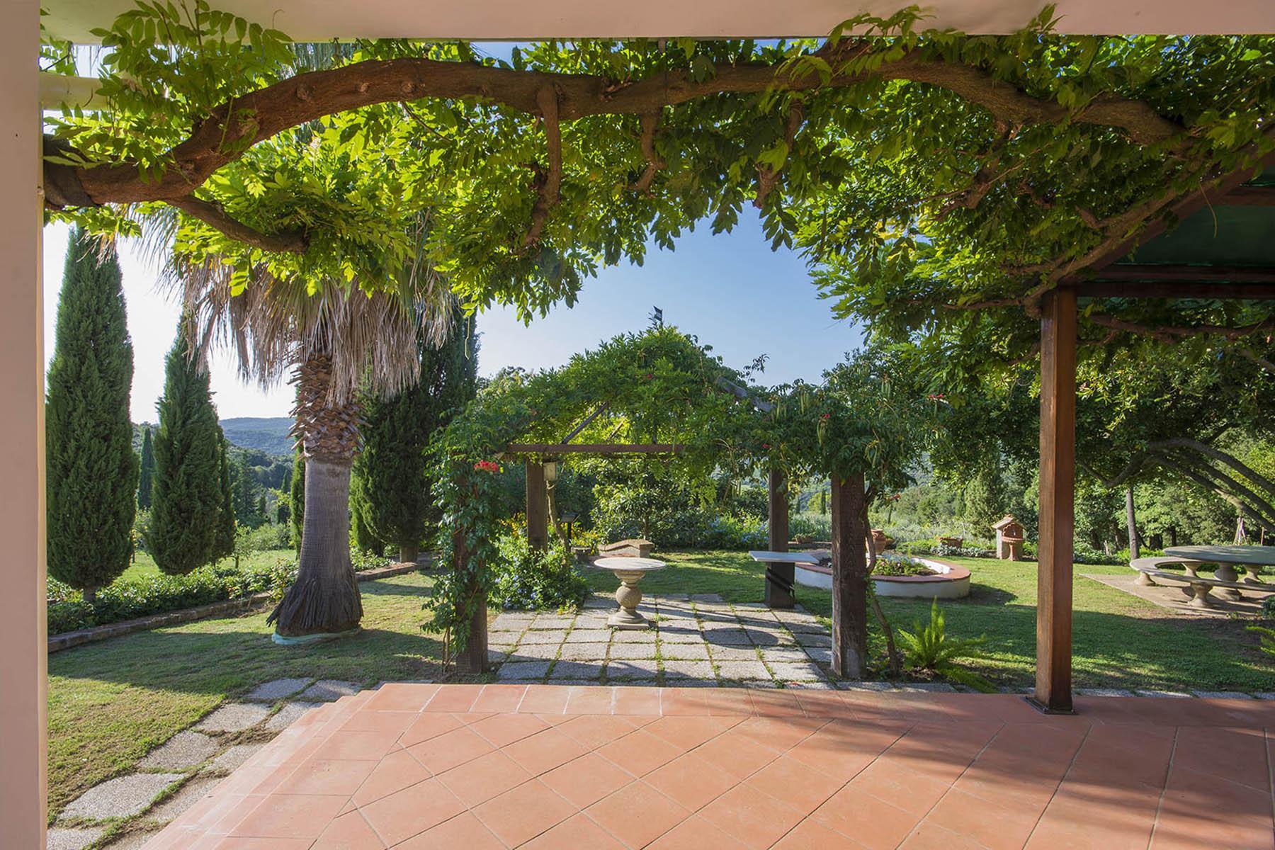 Villa in collina vista mare, nei pressi di Castiglioncello - 9