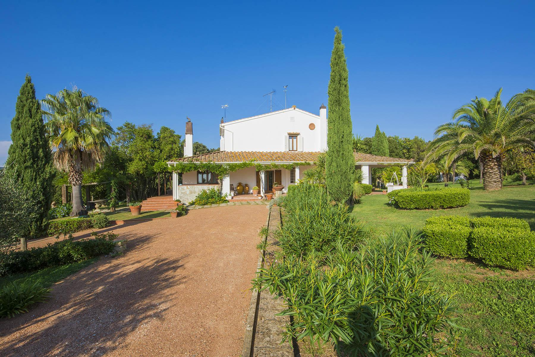 Villa in collina vista mare, nei pressi di Castiglioncello - 6